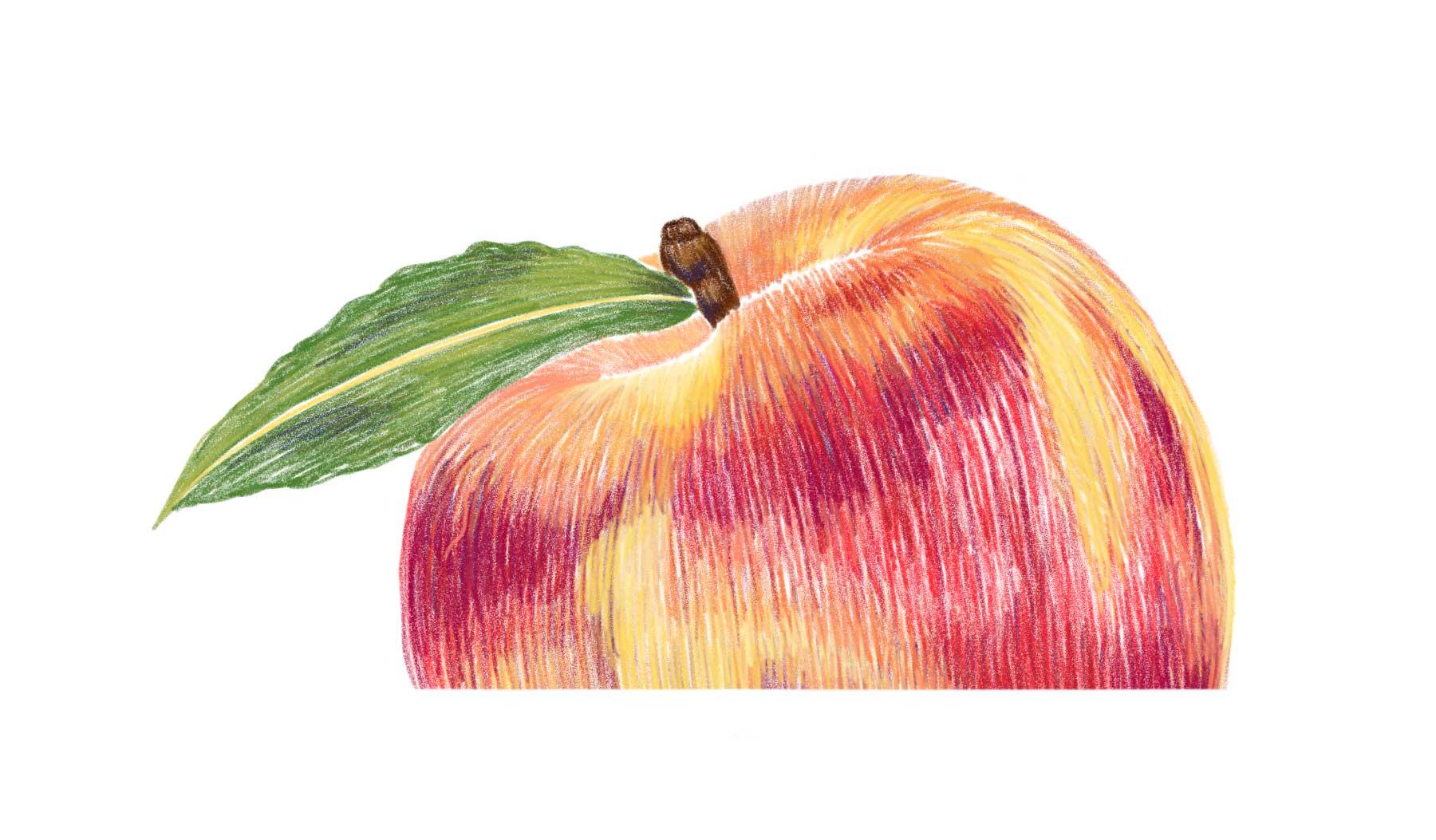 Peach_SS.jpg
