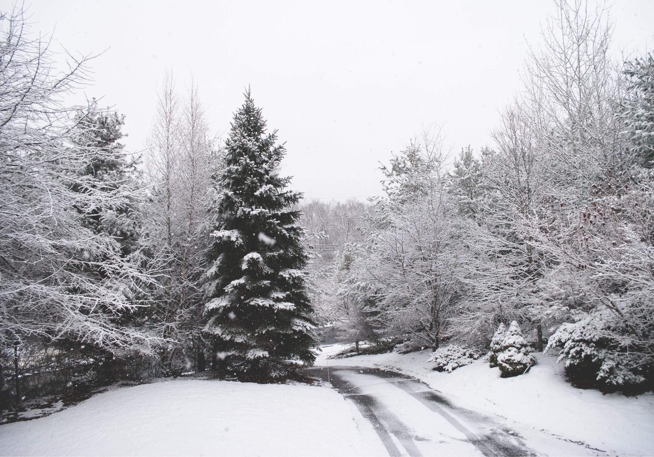 snowbackground.jpg