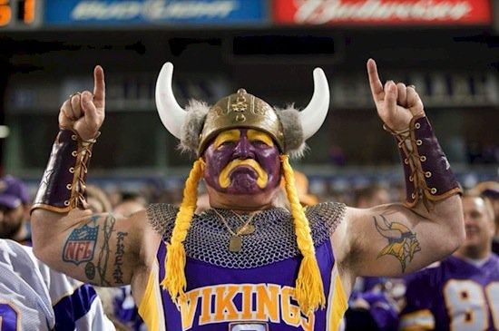fan-viking.jpg