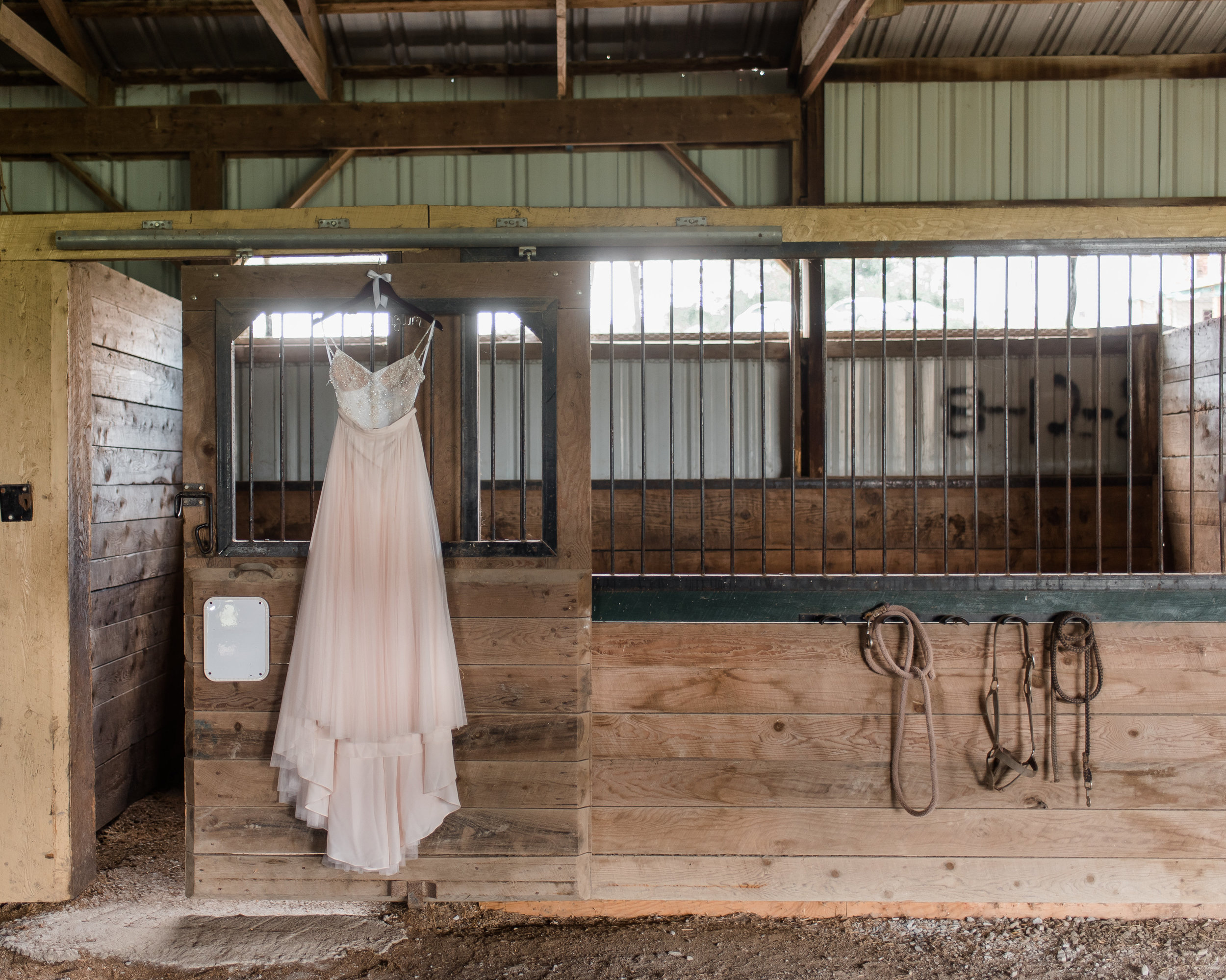 pittsburgh-wedding-photographer-horizonviewfarms-barn-farm-boho-vegan-chic0319.jpg