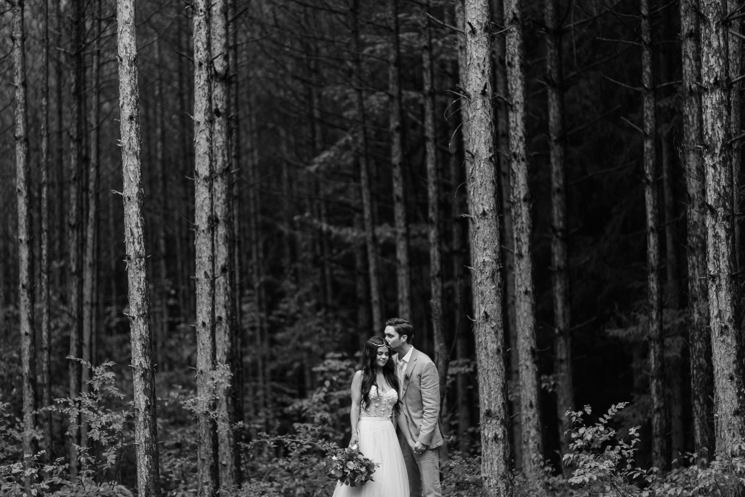 pittsburgh-wedding-photographer-horizonviewfarms-barn-farm-boho-vegan-chic0324.jpg