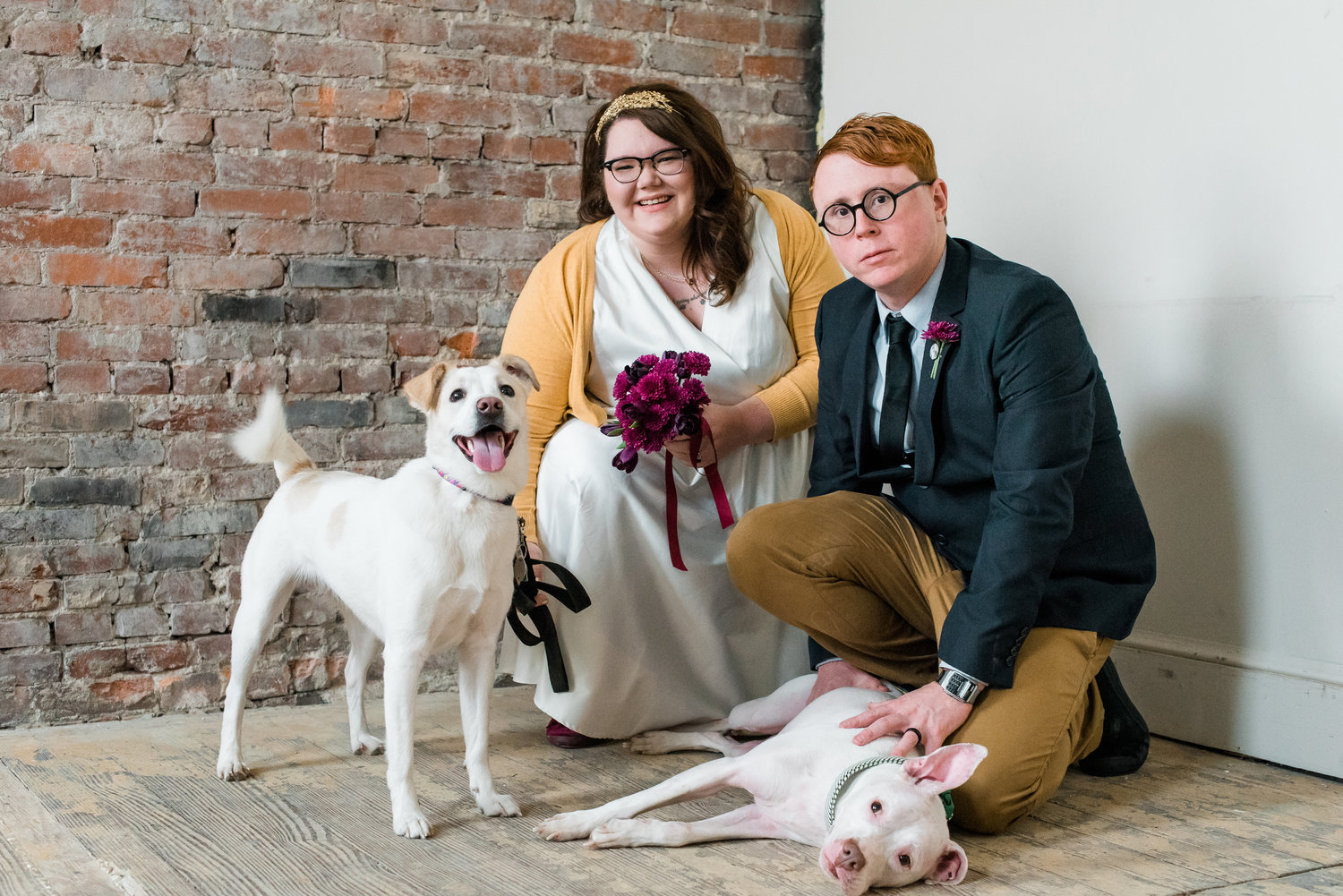 dawn-derbyshire-wedding-photographer-pittsburgh-dogs.jpg