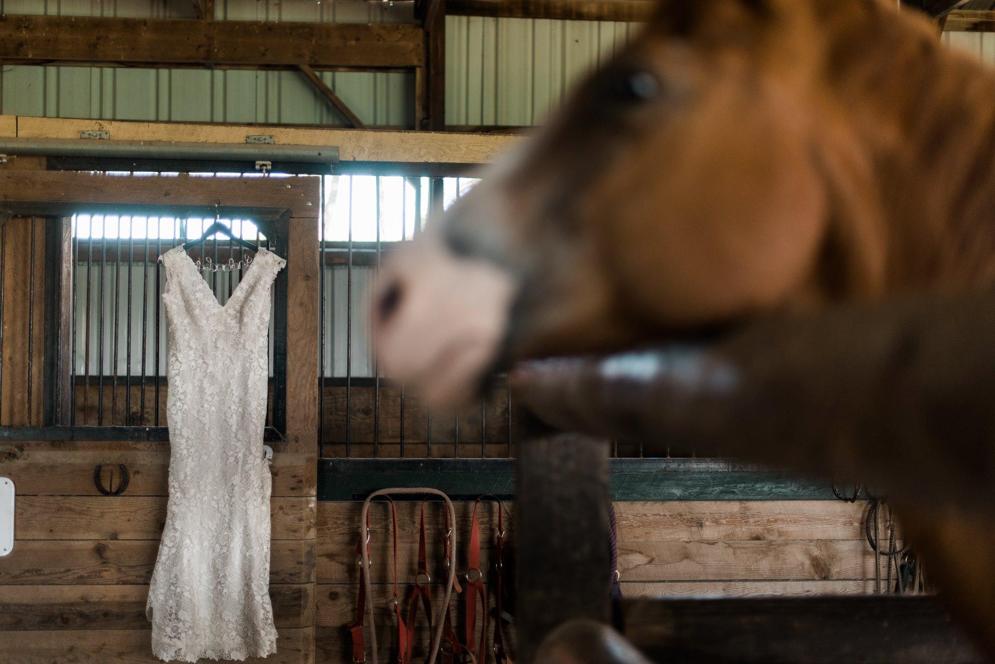 horizon-view-farms-pennsylvania-wedding-barn-rustic-country-0001.jpg