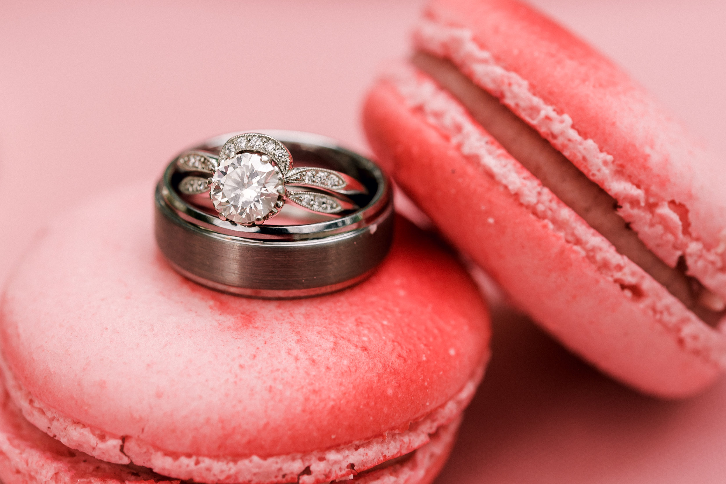 pittsburgh-wedding-photographer-hartwood-acres-0005.jpg