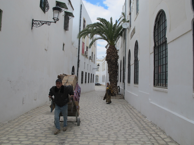 The buildings and streets of the Medina of Tunis are still providing an effective response to the climate more than one thousand years later. Which of our contemporary cities will be able to make similar claims?