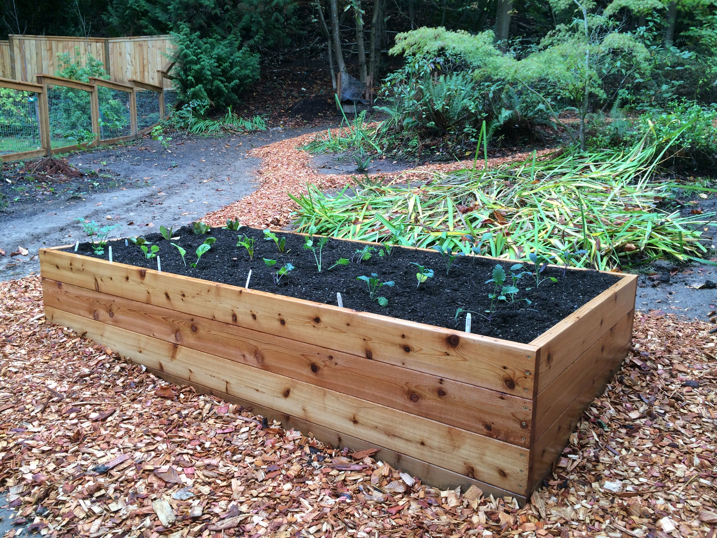 Classic raised garden bed