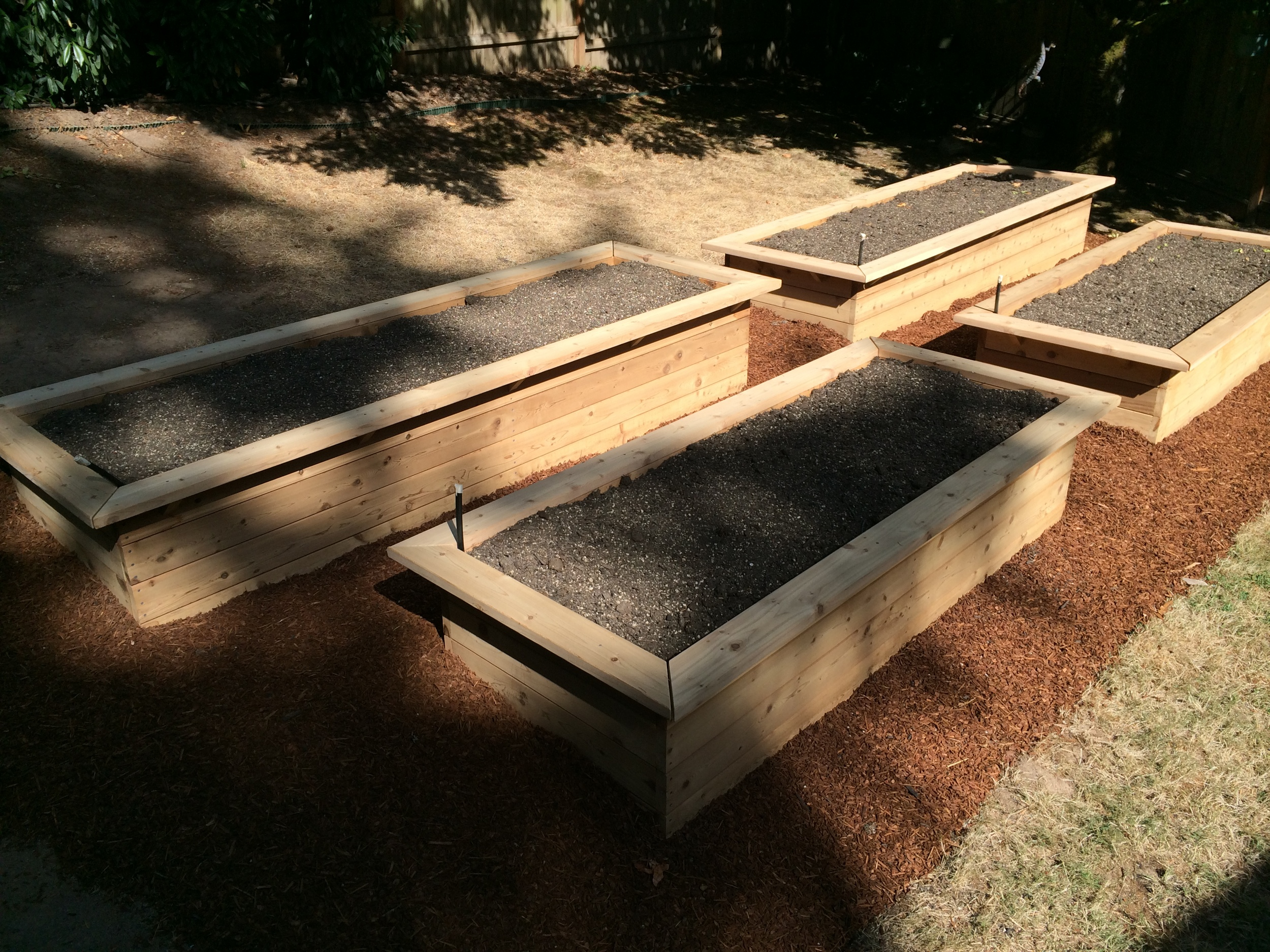 Raised Beds with Benches