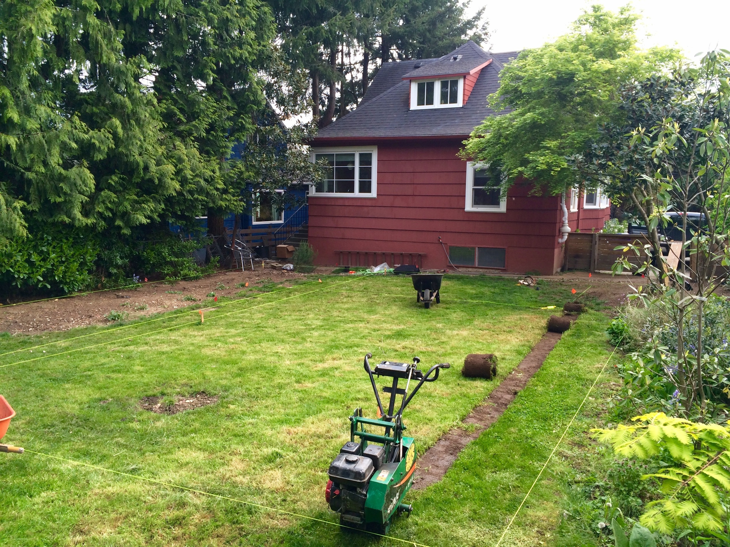 Sod Removal on day 1 of one of our biggest projects to date:  A complete backyard overhaul!