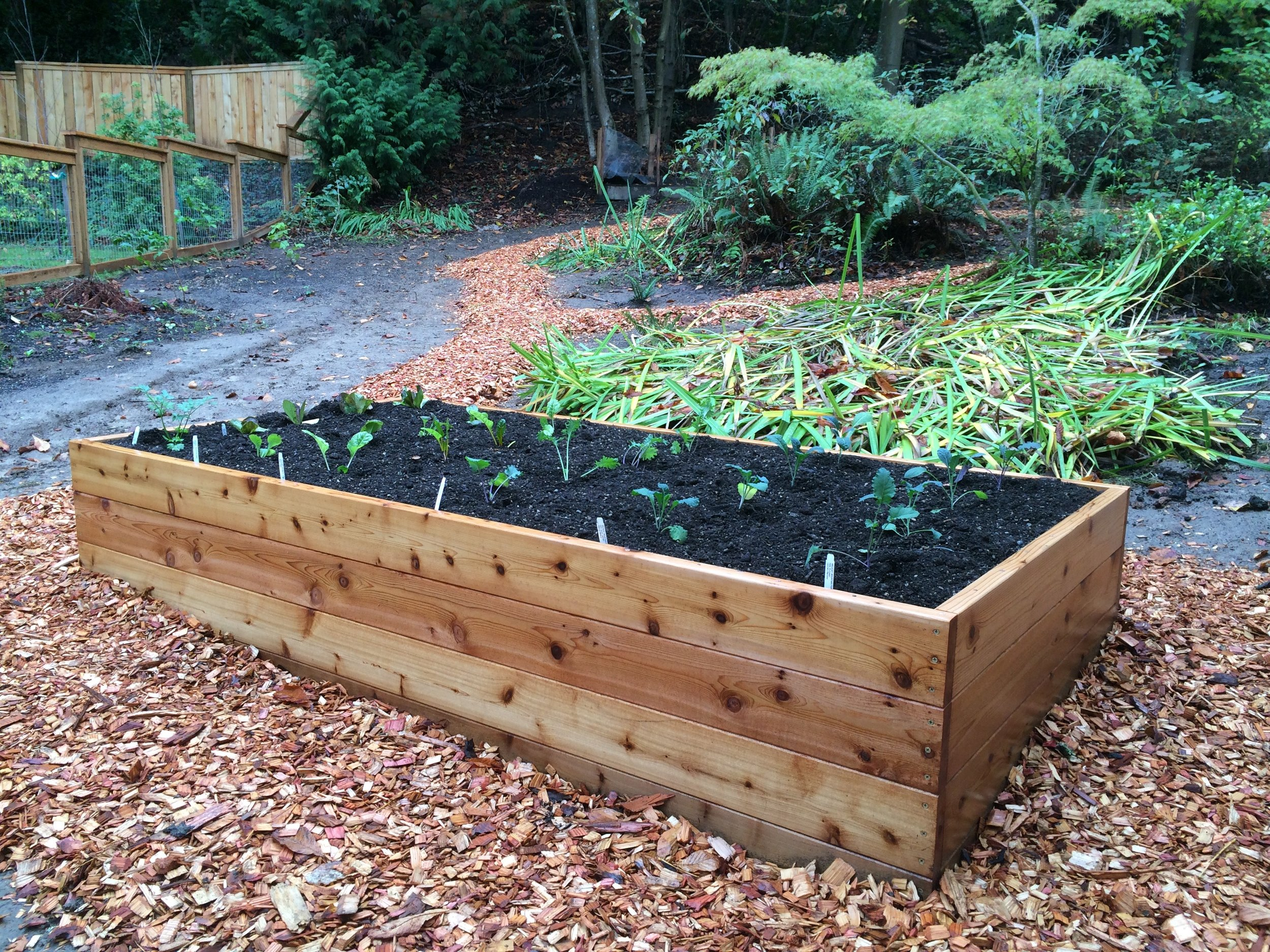 All of our raised garden beds come with a premium organic soil blend that makes growing easy!