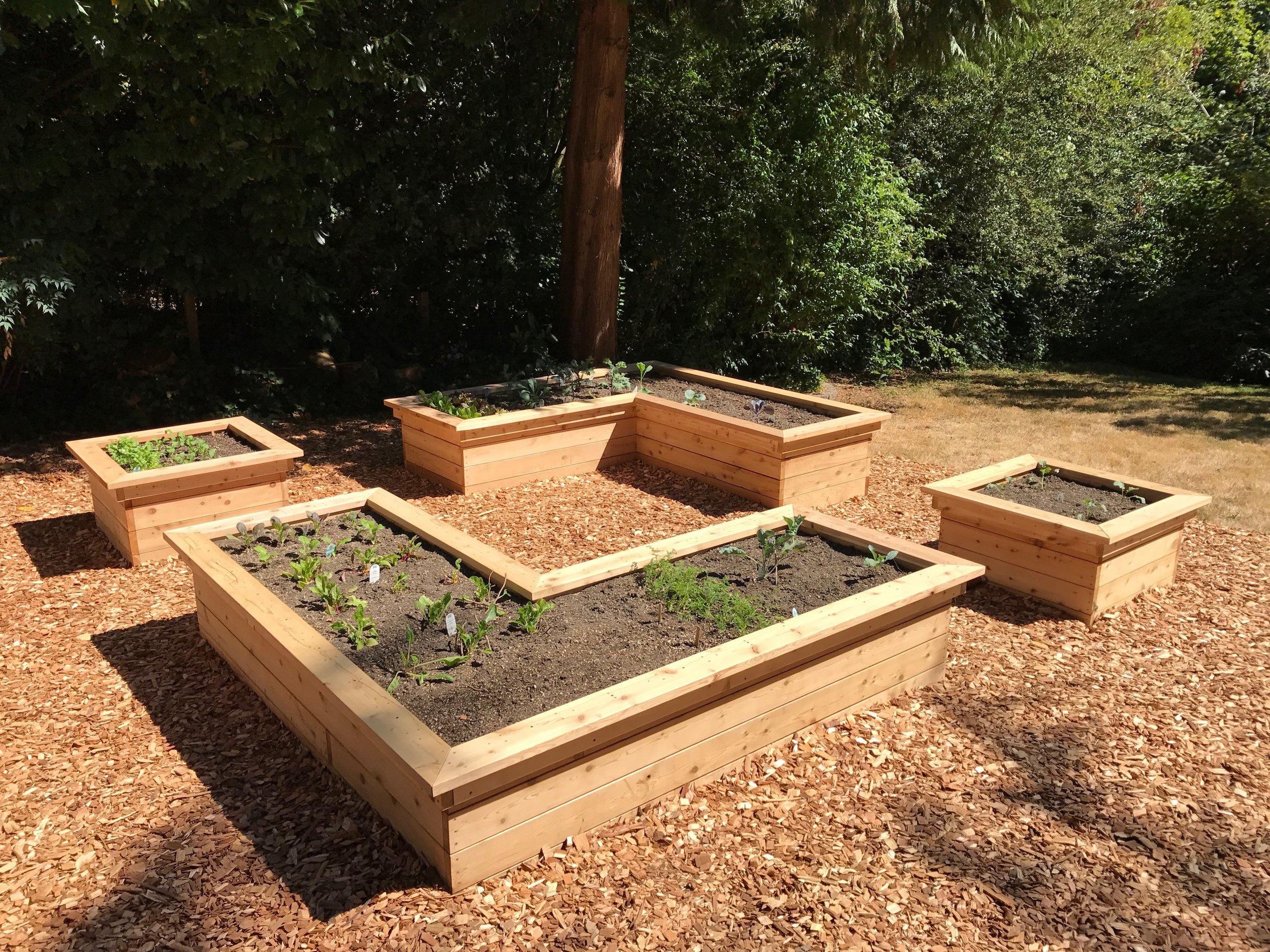 Fulmer Garden Build 3