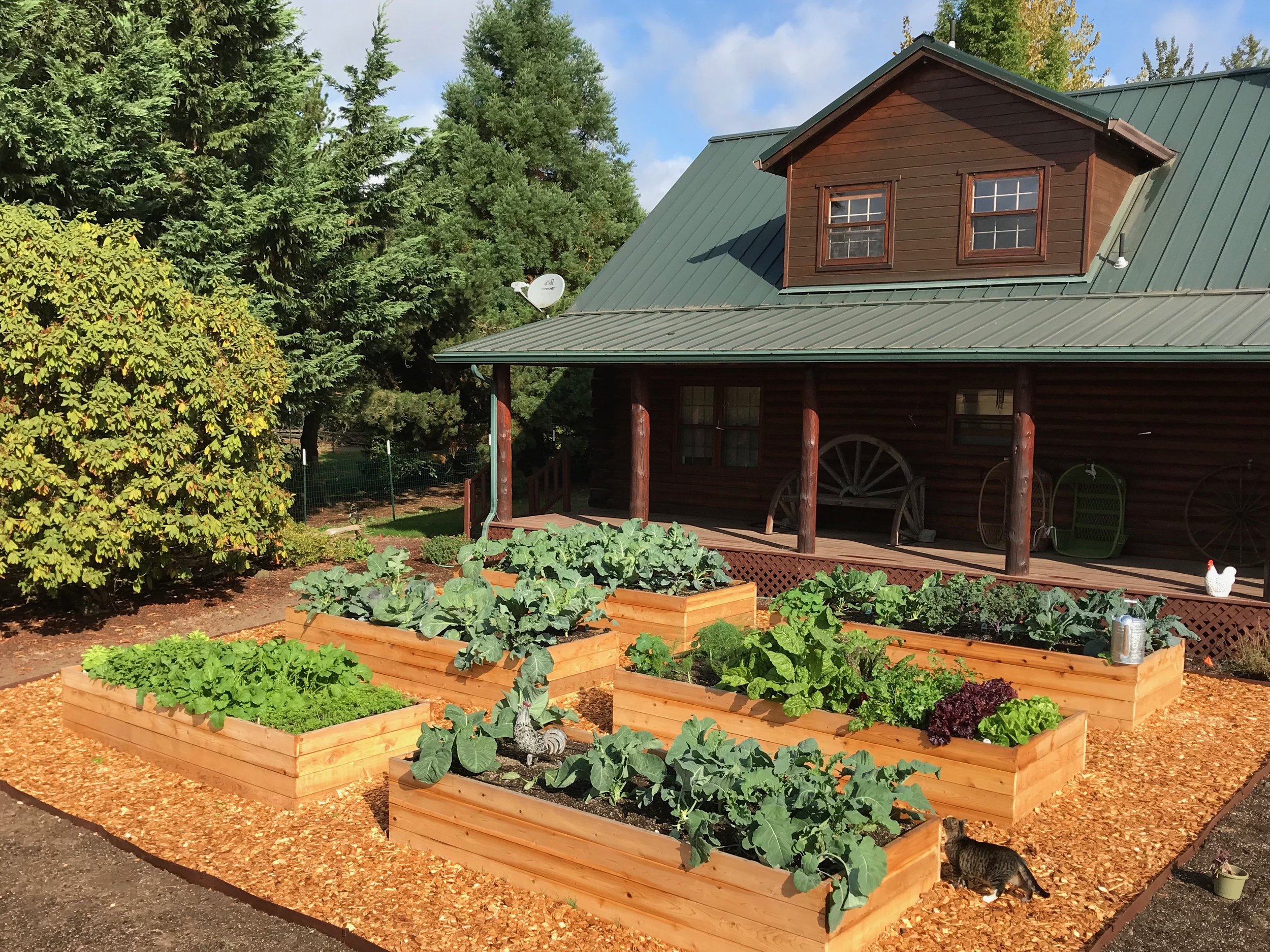 Bountiful Vegetable Garden Beds