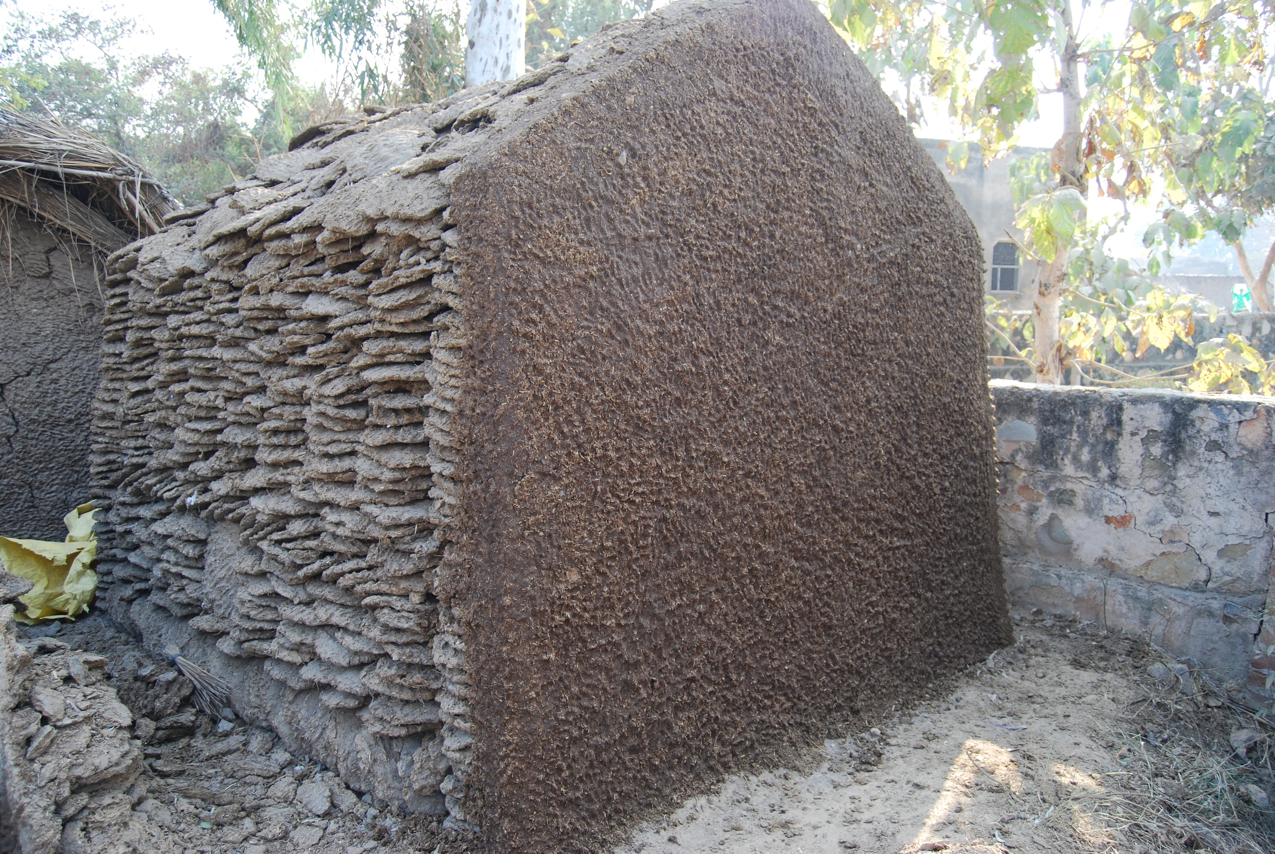 Dung house