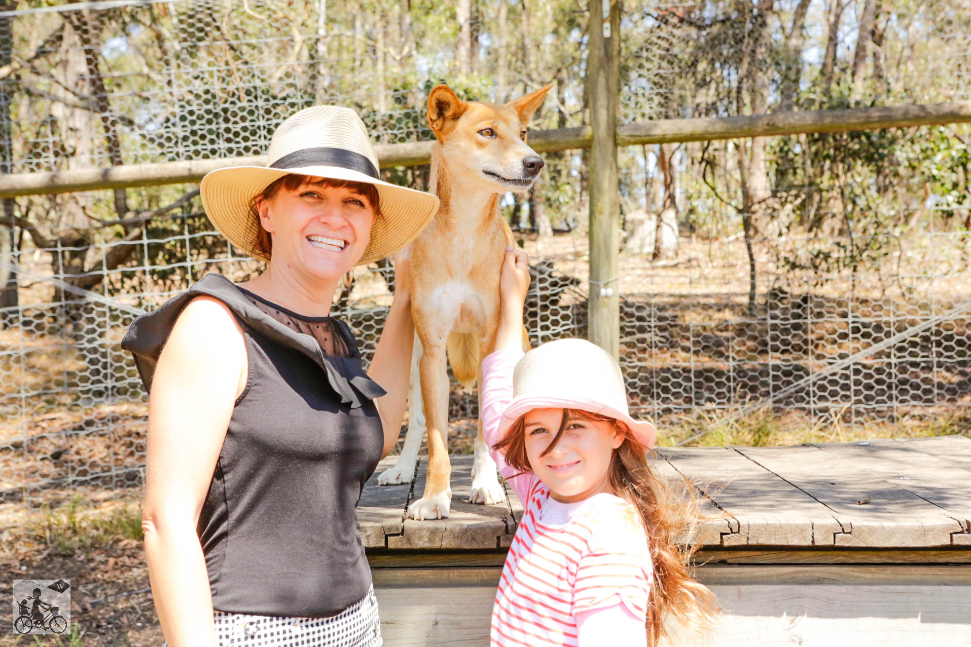 Mamma Knows West - Dingo Discovery Sanctuary (44 of 51).jpg