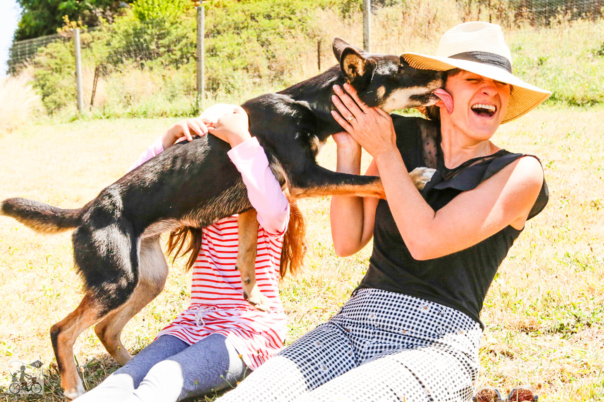 Mamma Knows West - Dingo Discovery Sanctuary (63 of 51).jpg