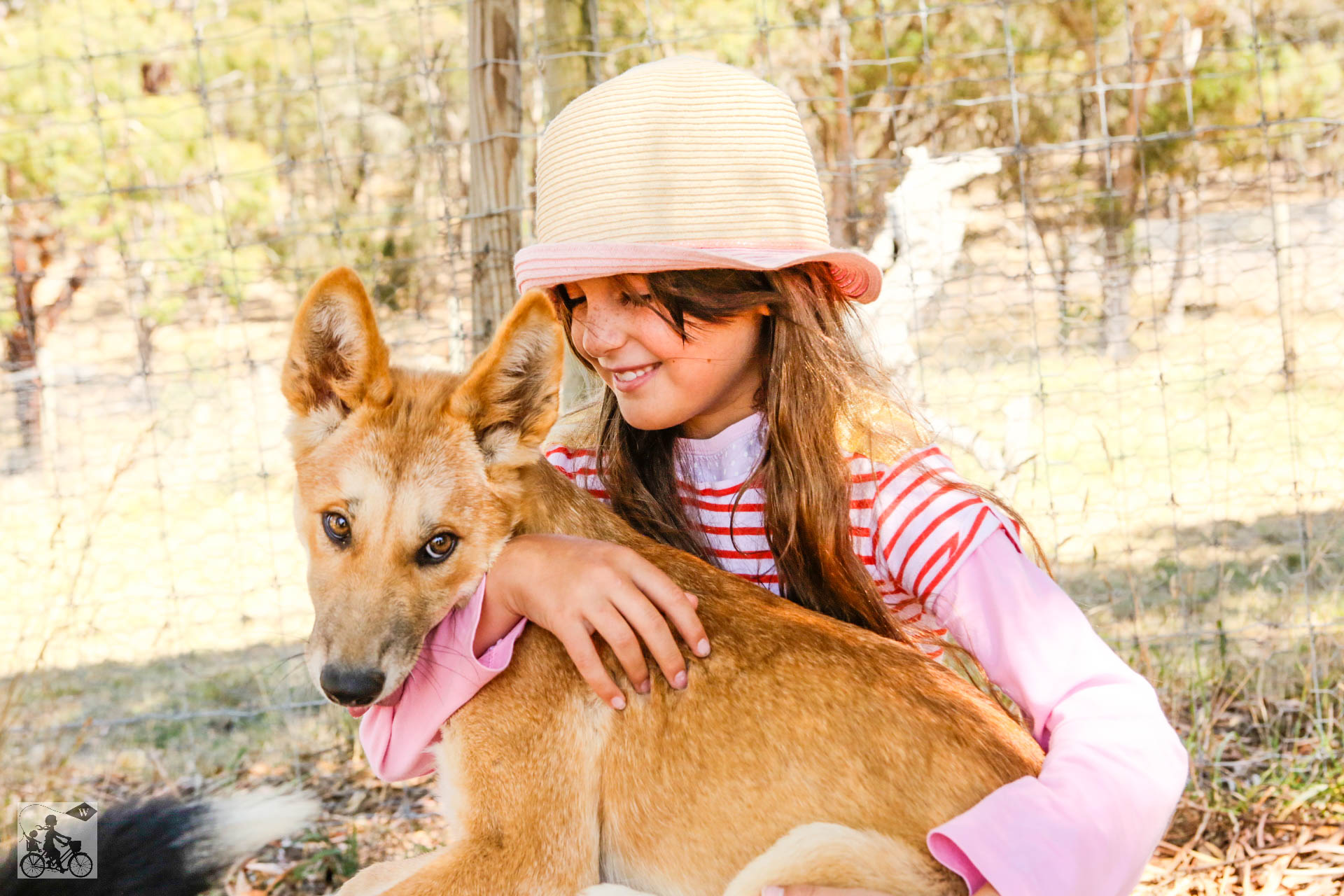 Mamma Knows West - Dingo Discovery Sanctuary (68 of 51).jpg
