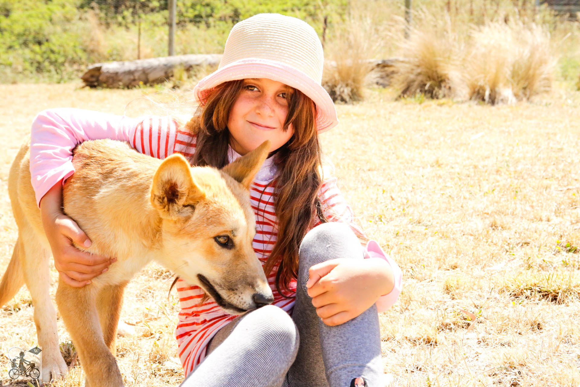 Mamma Knows West - Dingo Discovery Sanctuary (71 of 51).jpg