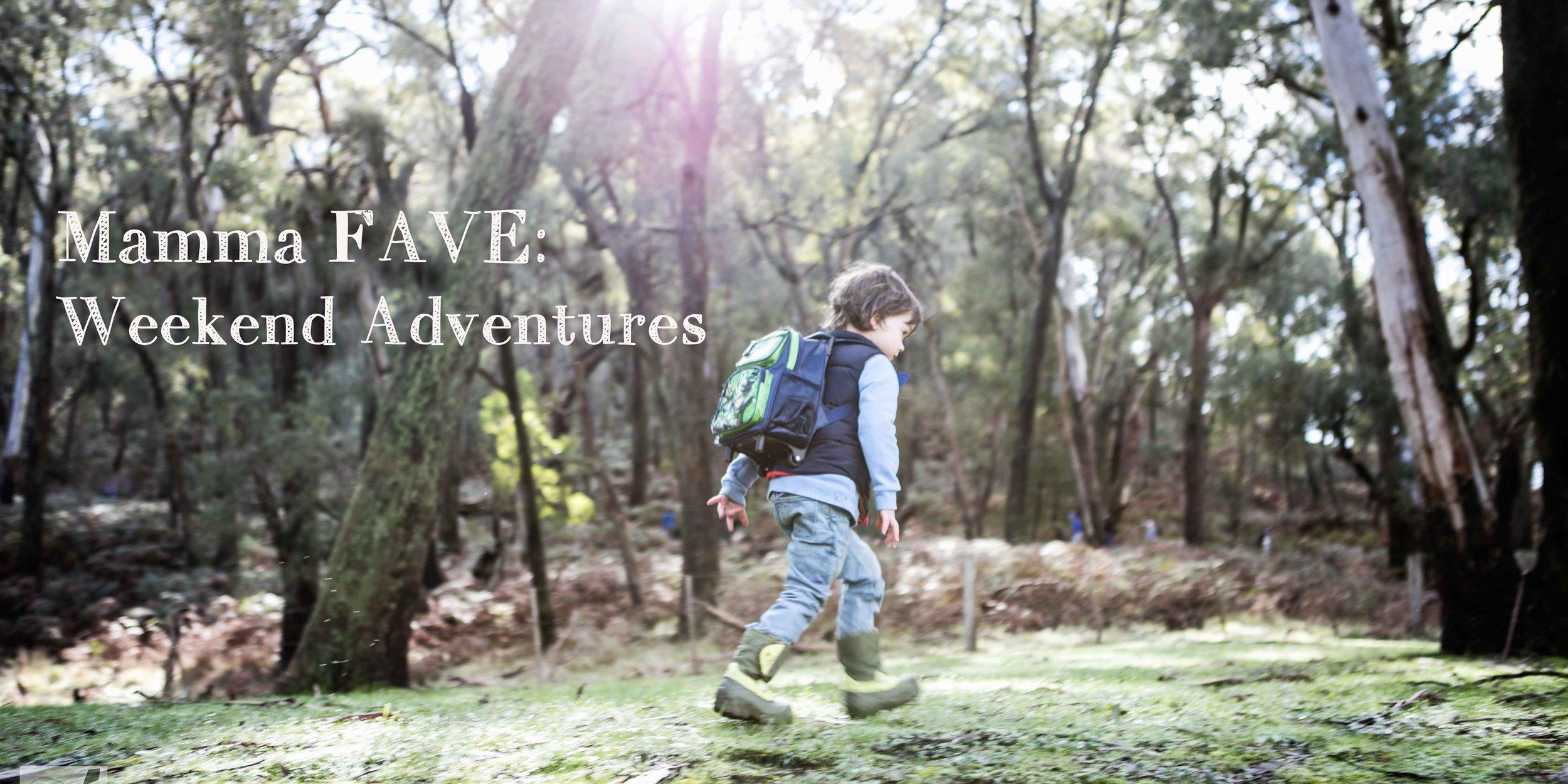 weekend adventures.jpg