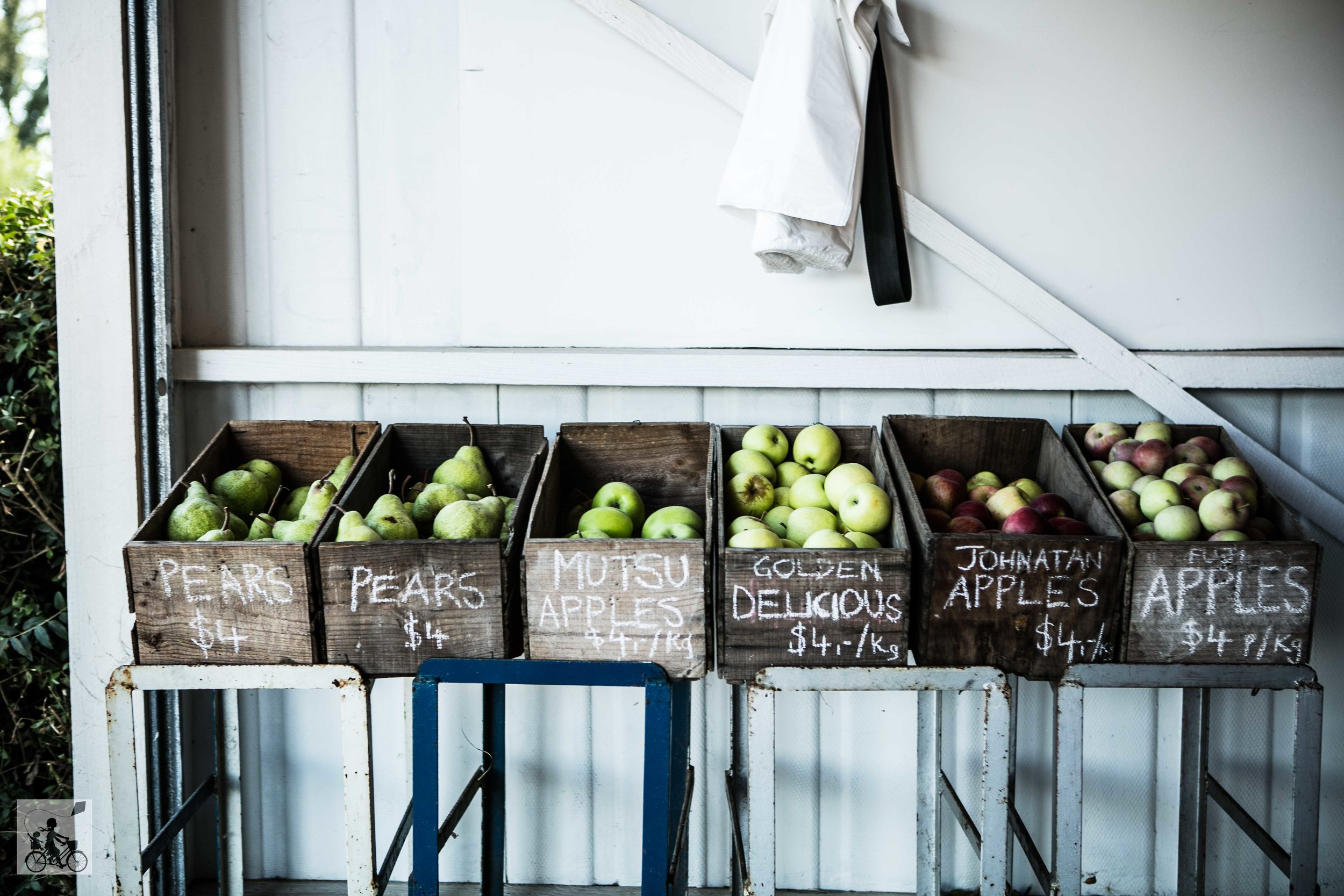Paynes Orchards Mamma Knows West (1 of 24).jpg