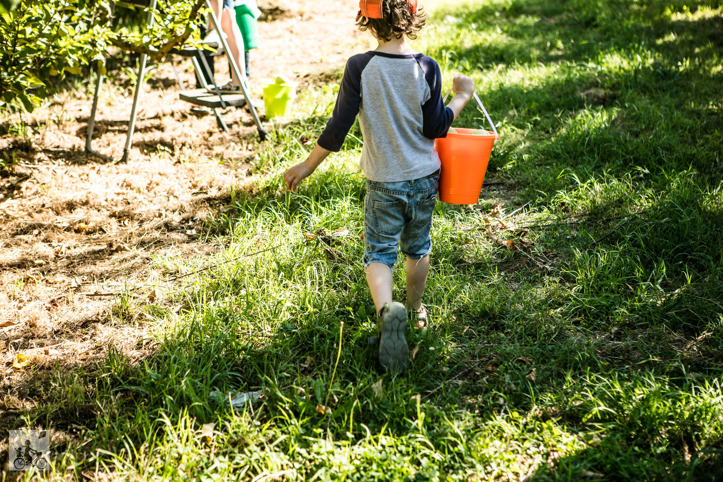 Paynes Orchards Mamma Knows West (24 of 24).jpg