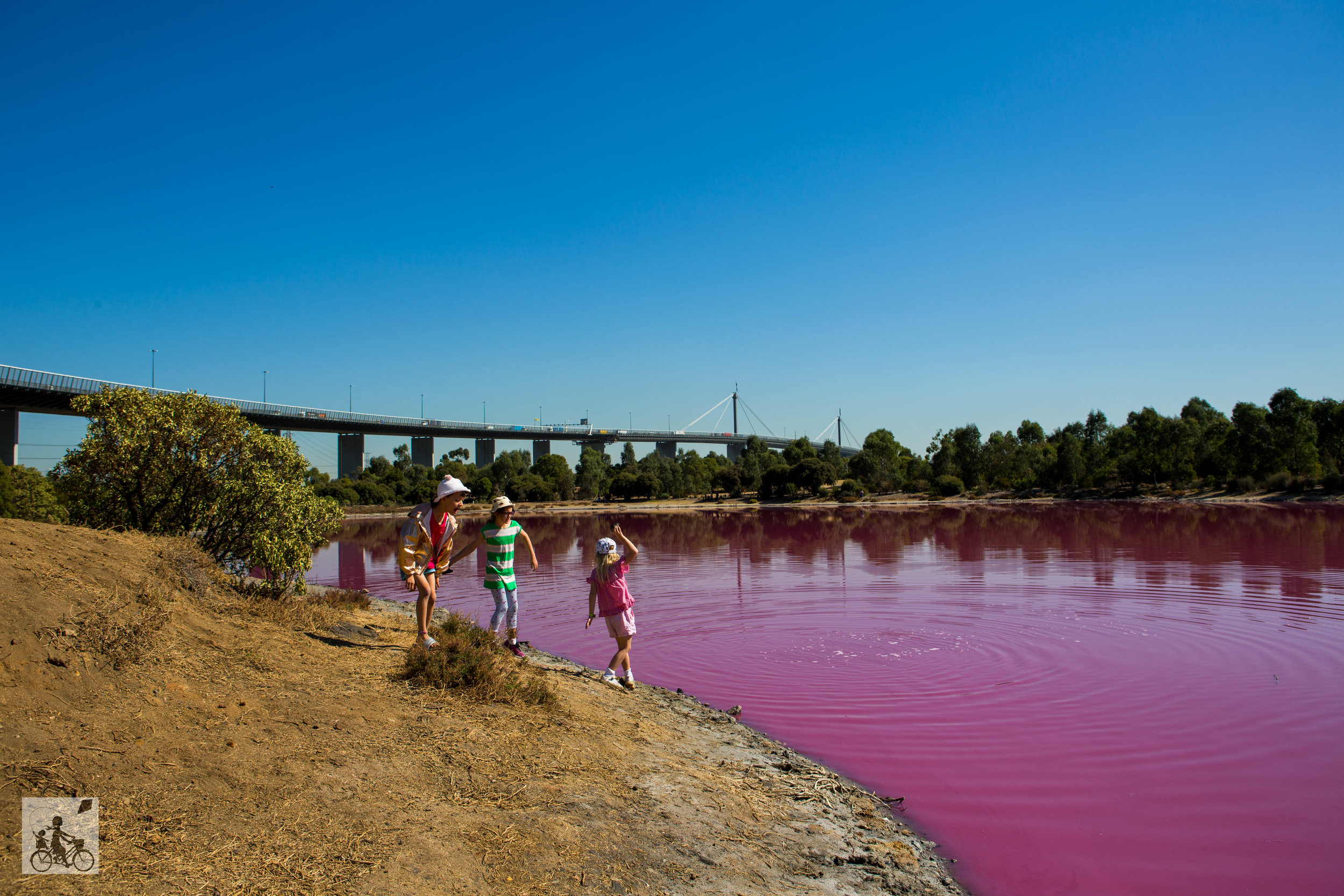 The Pink Lake  - Mamma Knows West (6 of 8).jpg