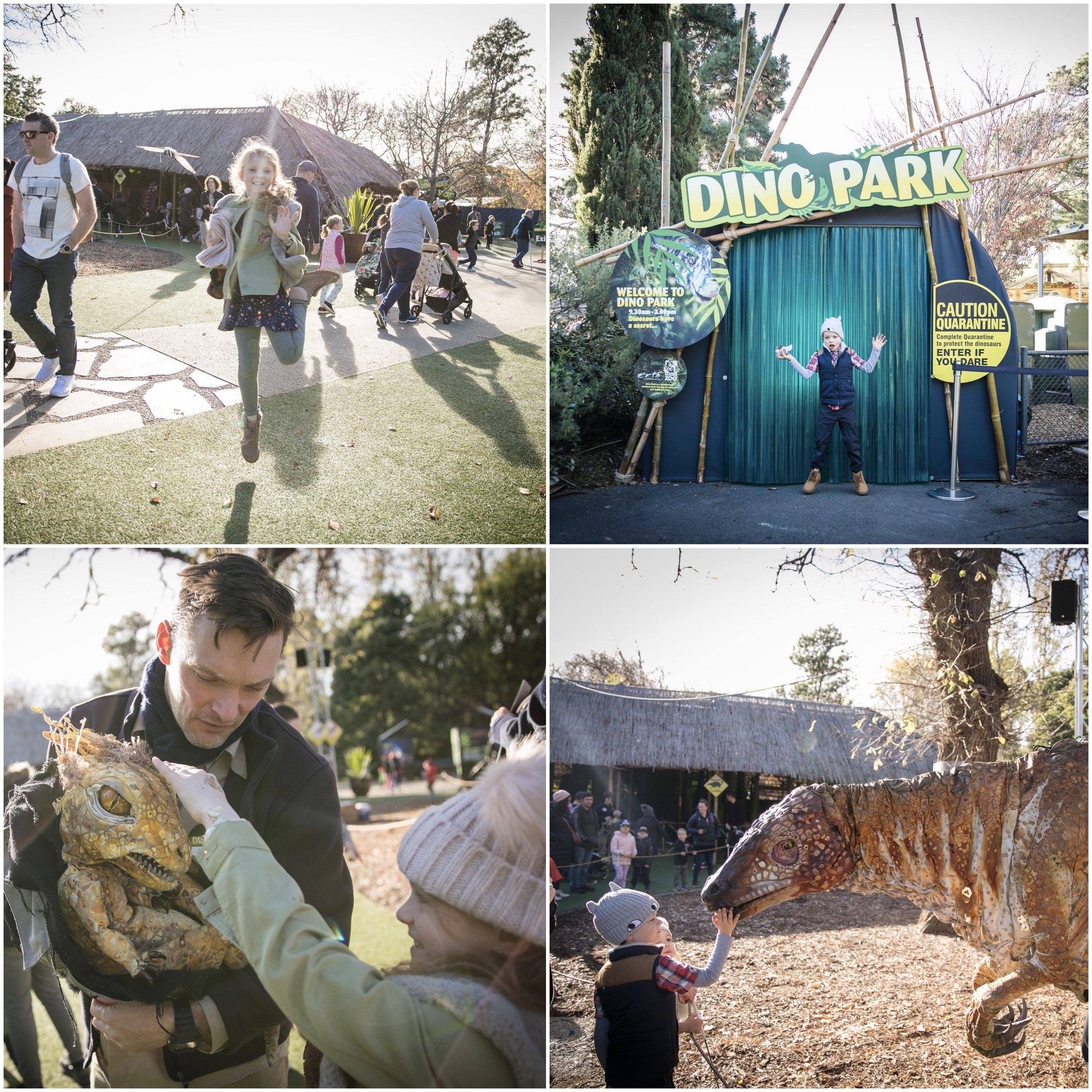 Dino Park 1.jpg