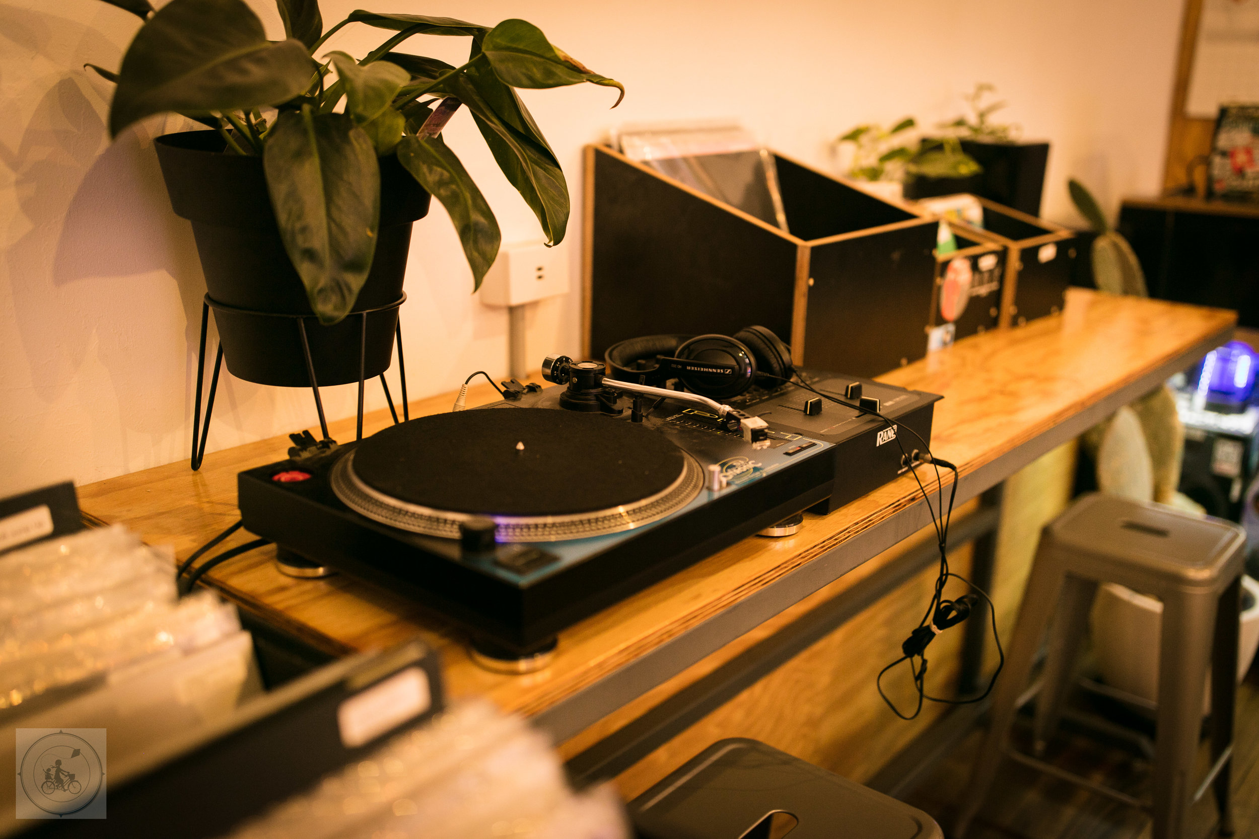 Counterweight Vinyl and Espresso Mamma Knows West (7 of 13).jpg
