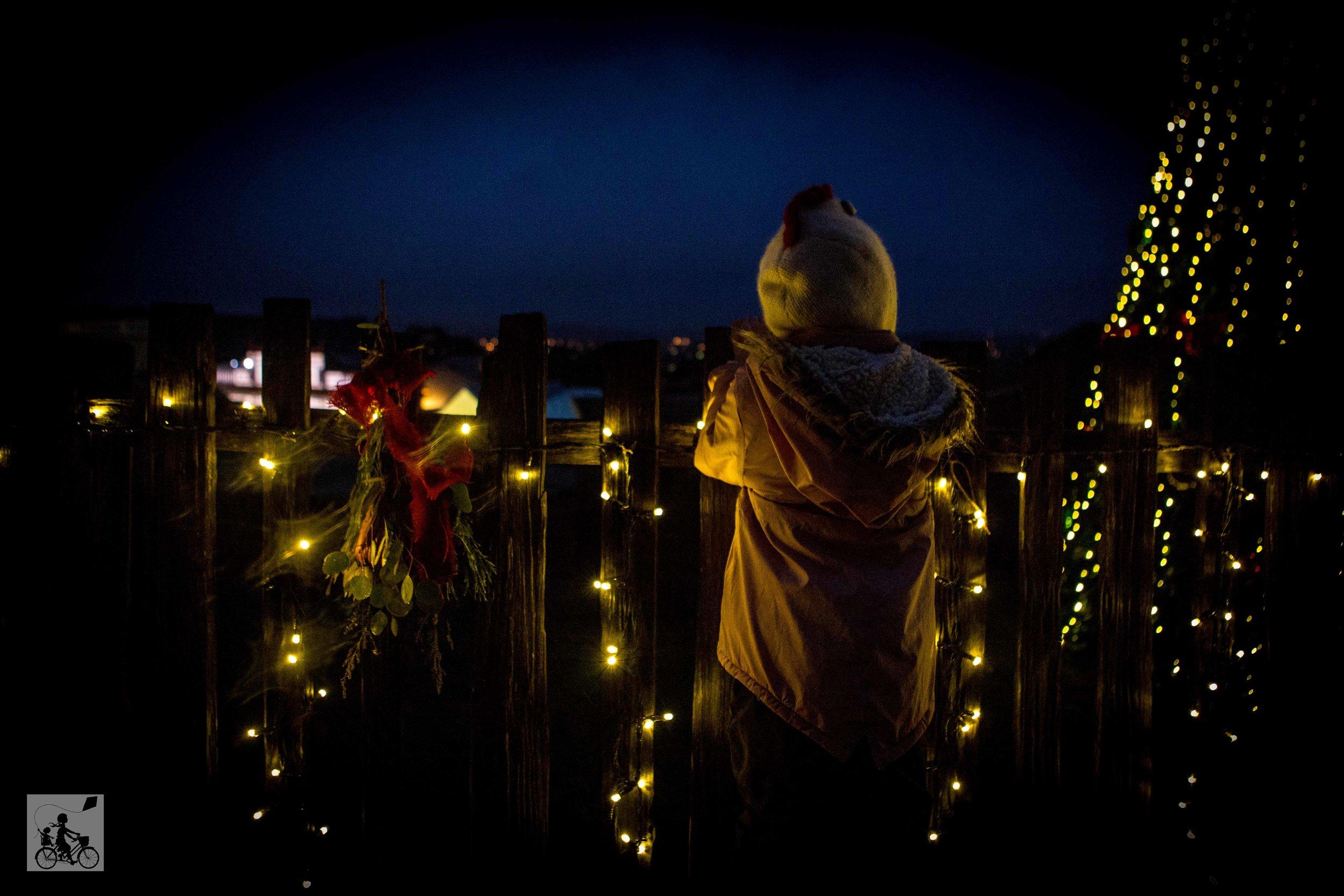 Sovereign Hill Winter Wonderlights - Mamma Knows Melbourne (40 of 74).jpg