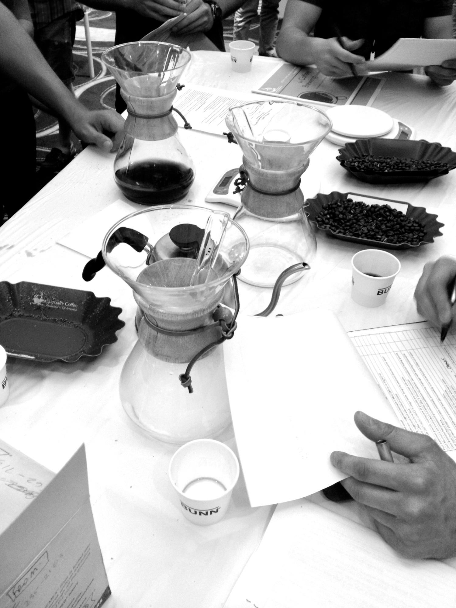 Brew Methods, Barista Camp 2013.