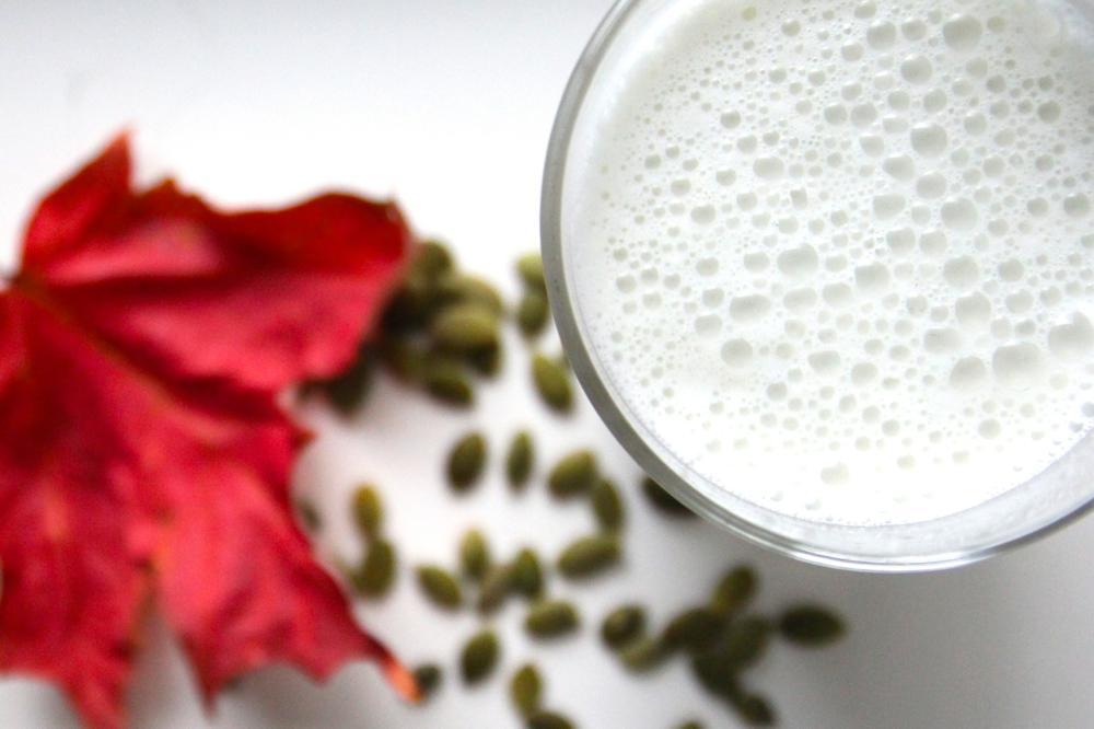 Pumpkin Seed Milk