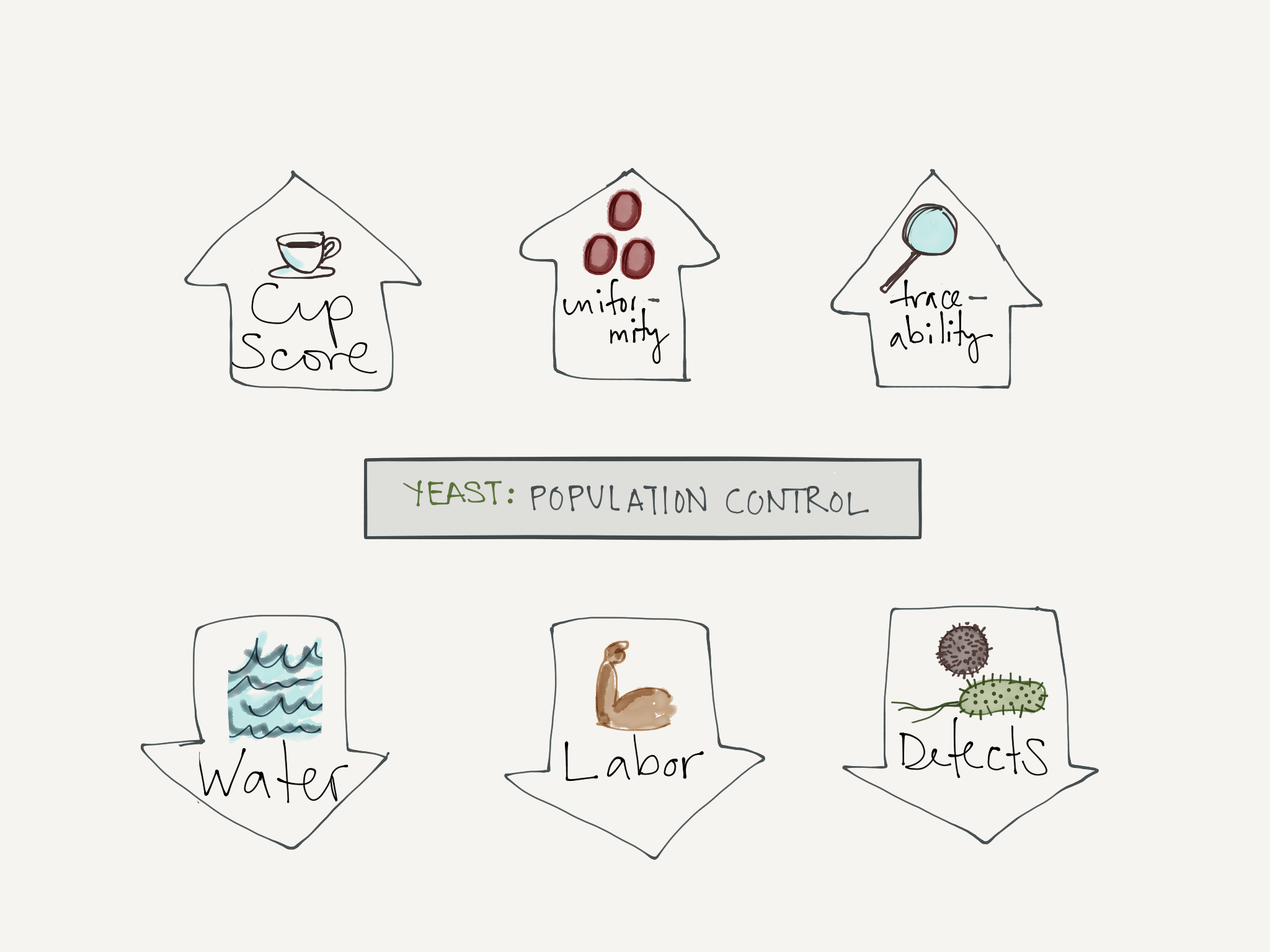 The Benefits of Yeast Population Control. Illustration by Lucia Solis