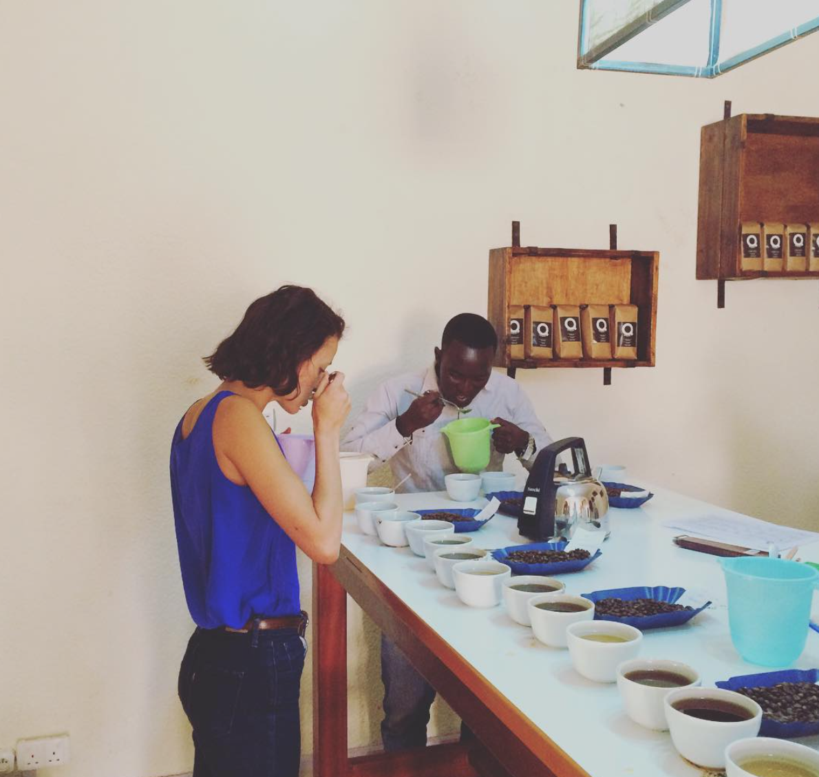 """""""Sample cupping: One washing station, two different weeks of harvest, three separate hills."""" Photo courtesy of Aleida Stone"""