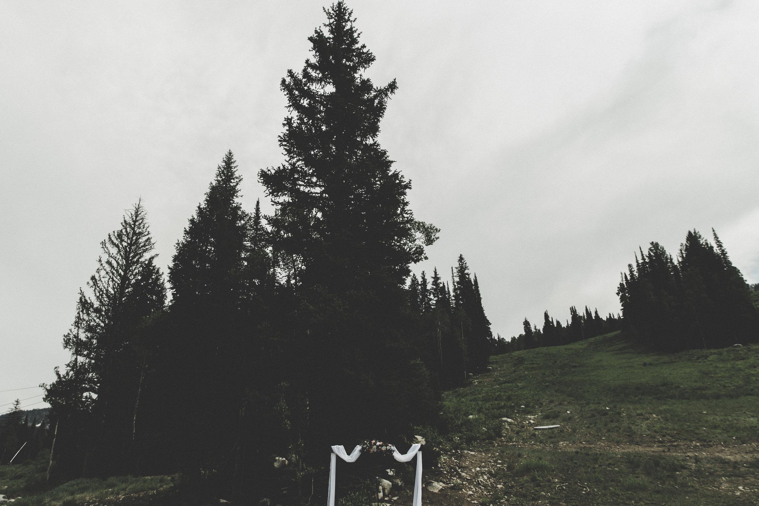 alyssasorenson-solitudeutahwedding--49.jpg