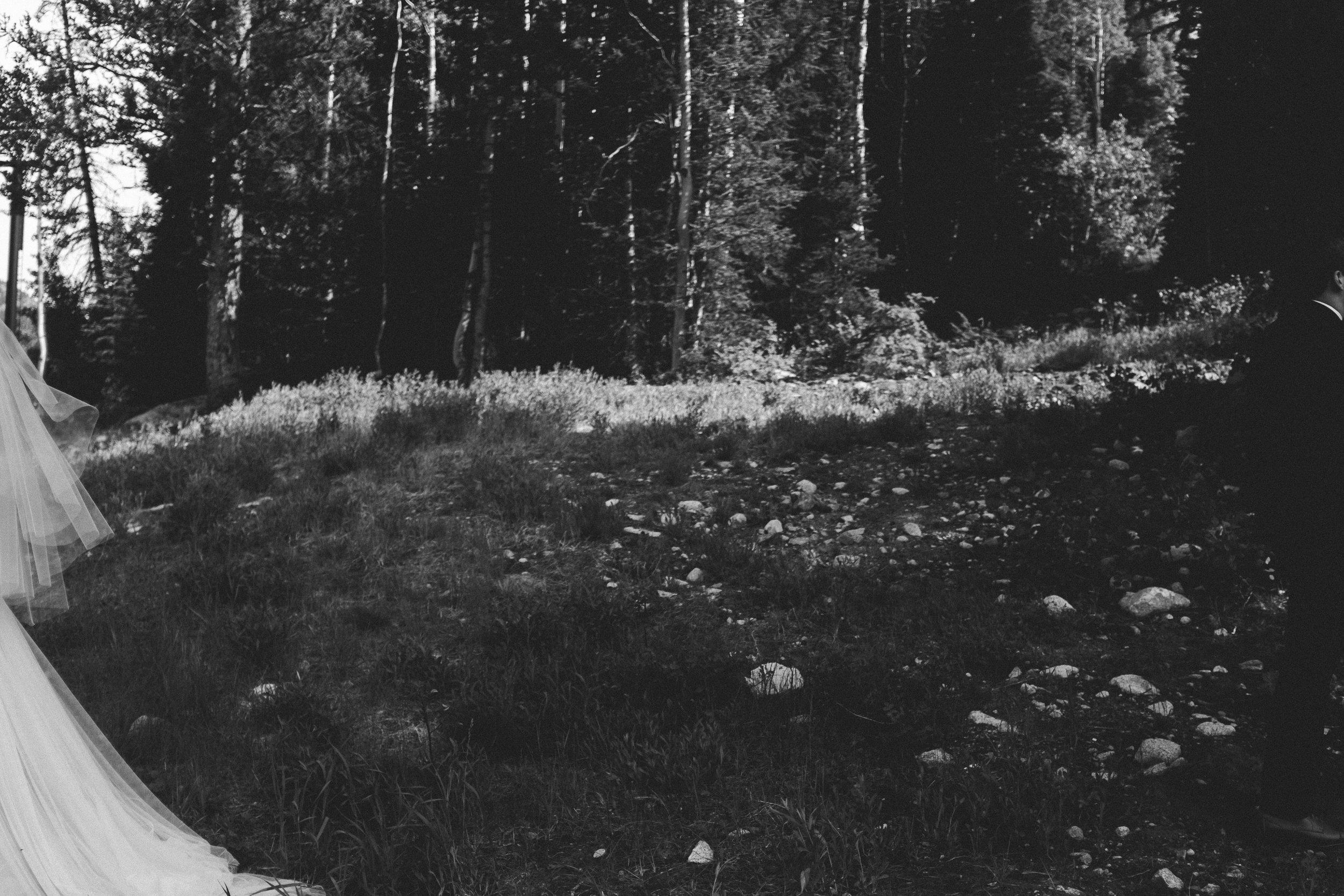 alyssasorenson-solitudeutahwedding--64.jpg