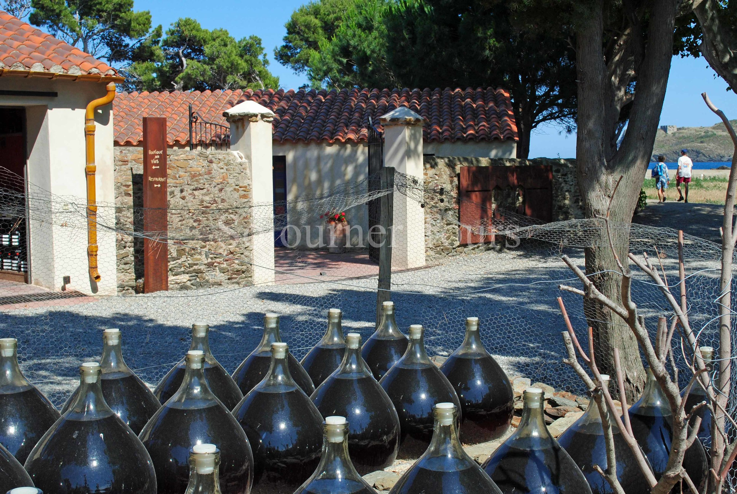Hiking & Wine Tasting on the Vermillion Coast