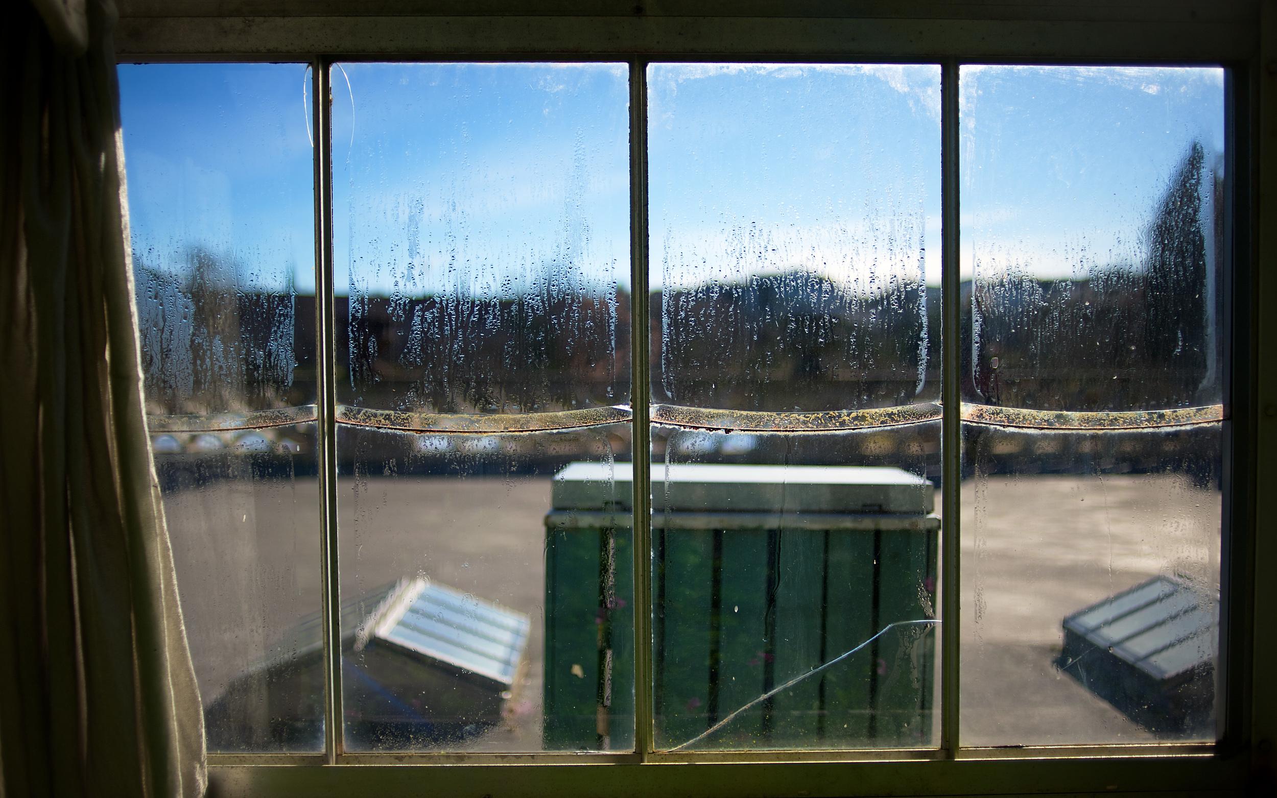 Window_2880x1800.jpg