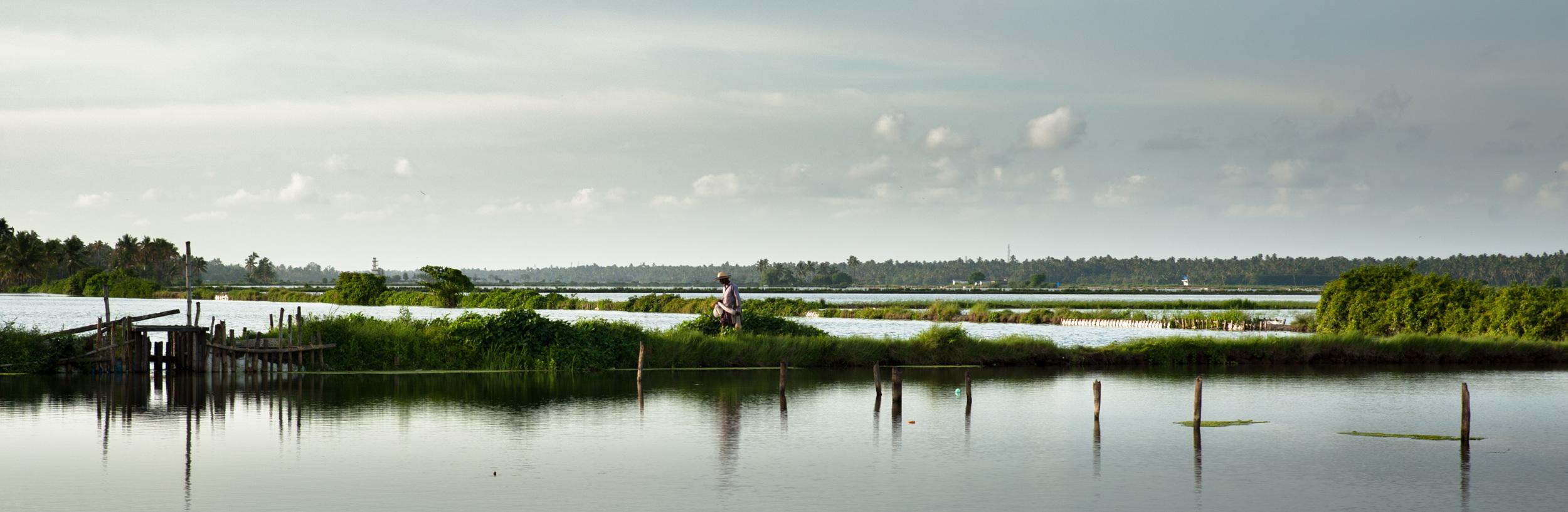 Fisherman returning home - Kerala