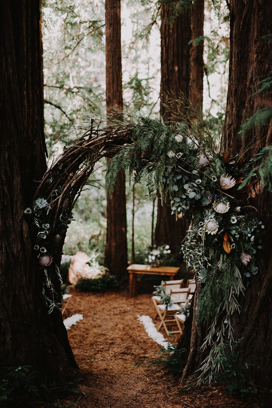 Bay Area Redwoods Wedding at The Island Farm.jpg