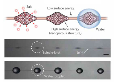 By leaching salt originally included in the fibers, structures are created that attract the water on the microfibers