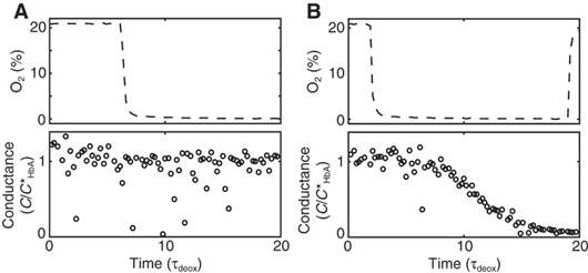 Blood from a patient with benign sickle cell disease (A) and sever sickle cell disease (B) were both subjected to changes in oxygen concentration, indicated by the top panels. This resulted in drastically different changes in conductance, which could distinguish the two types of patients.