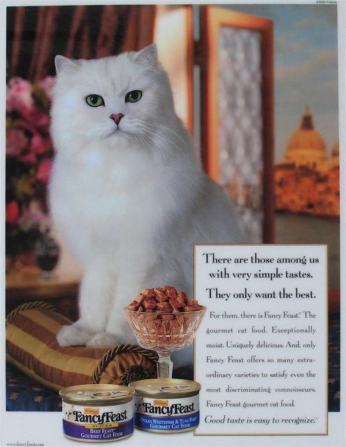 Fancy Feast Dry Cat Food