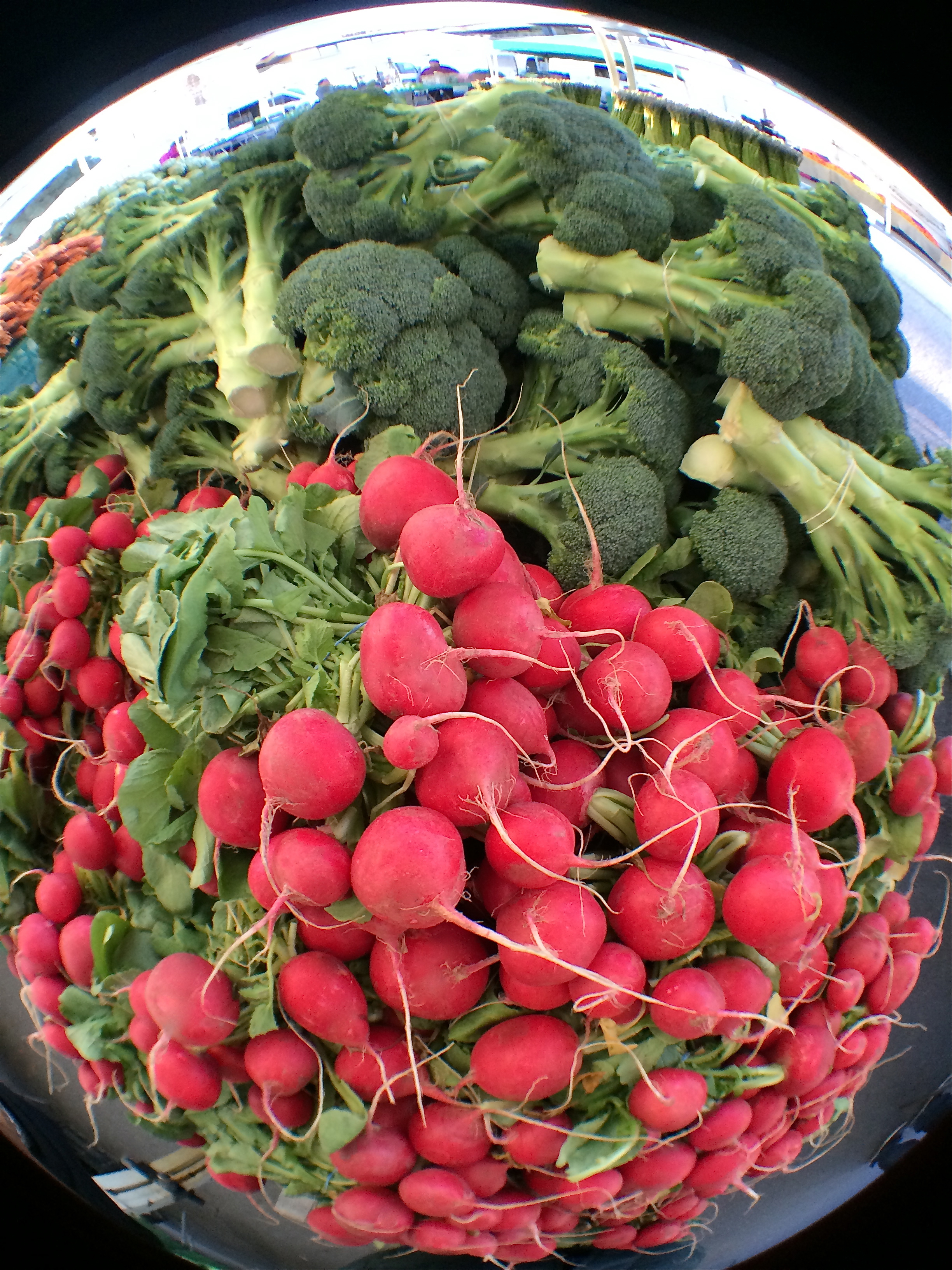 Farmer's Market Radishes