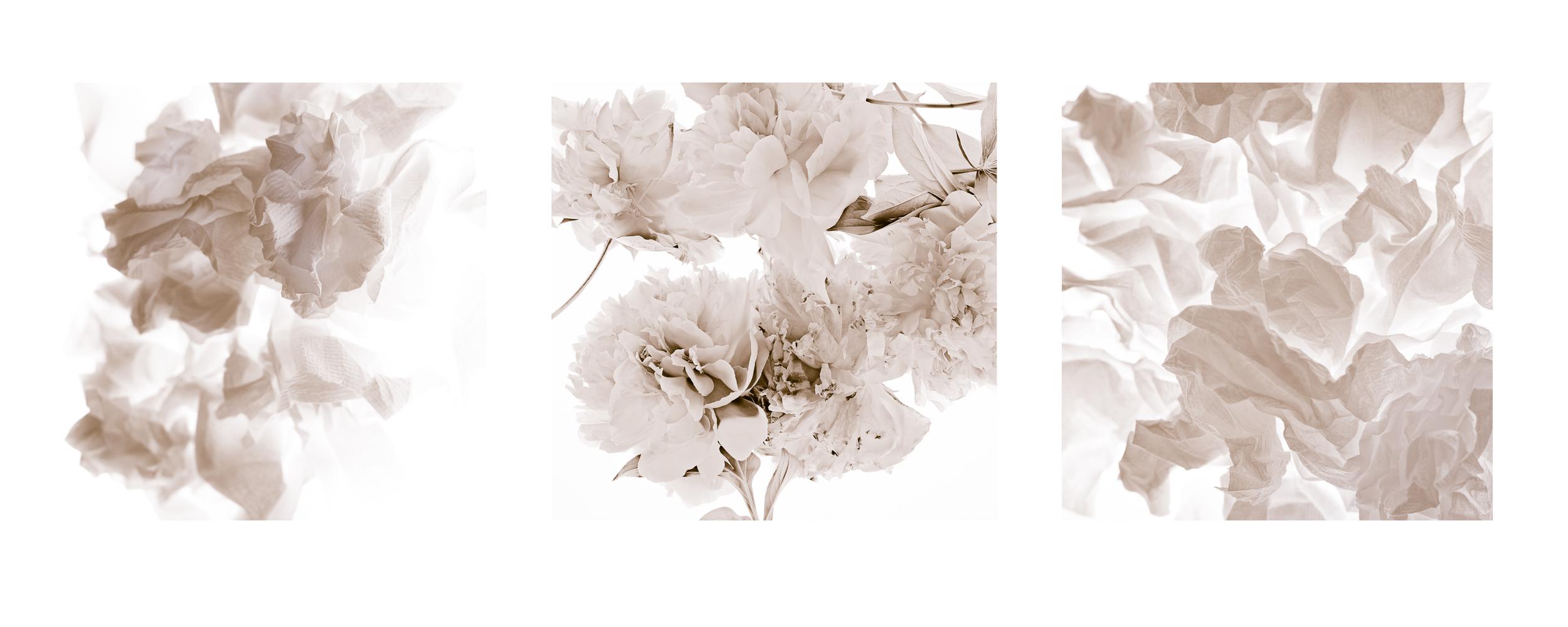 triptych one.jpg