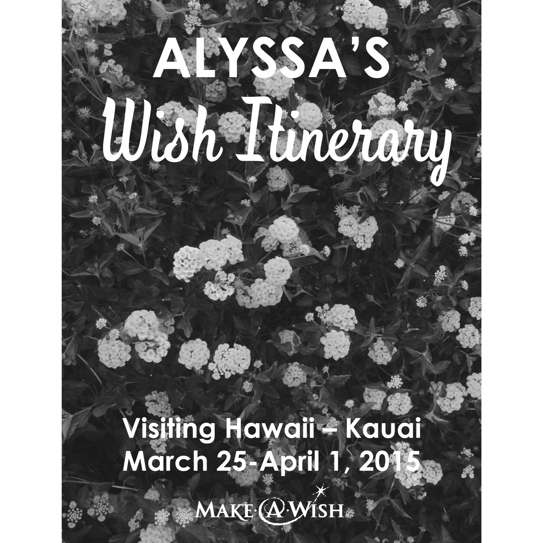 Make-A-Wish Hawaii Itinerary
