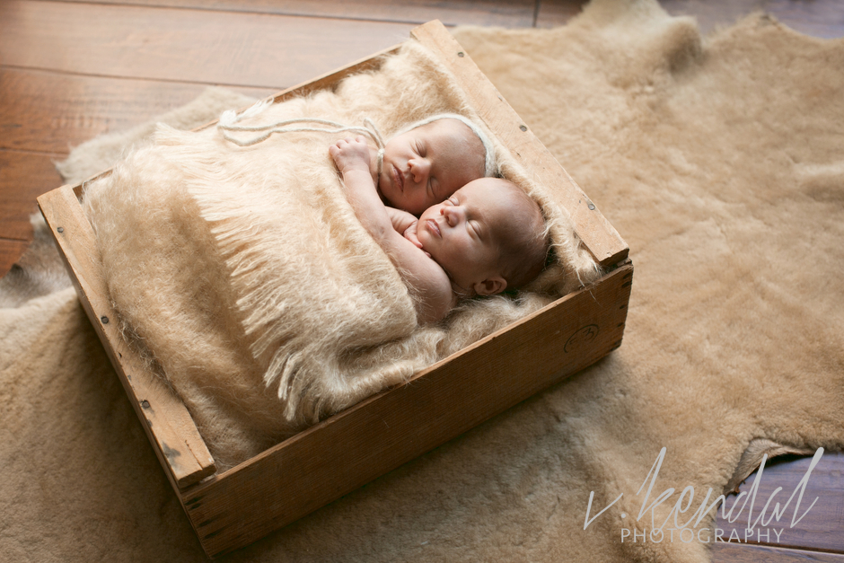 V KENDAL PHOTOGRAPHY-Los-Angeles-Newborn-Twins-Baby-Maternity-Santa Barbara 1480.JPG