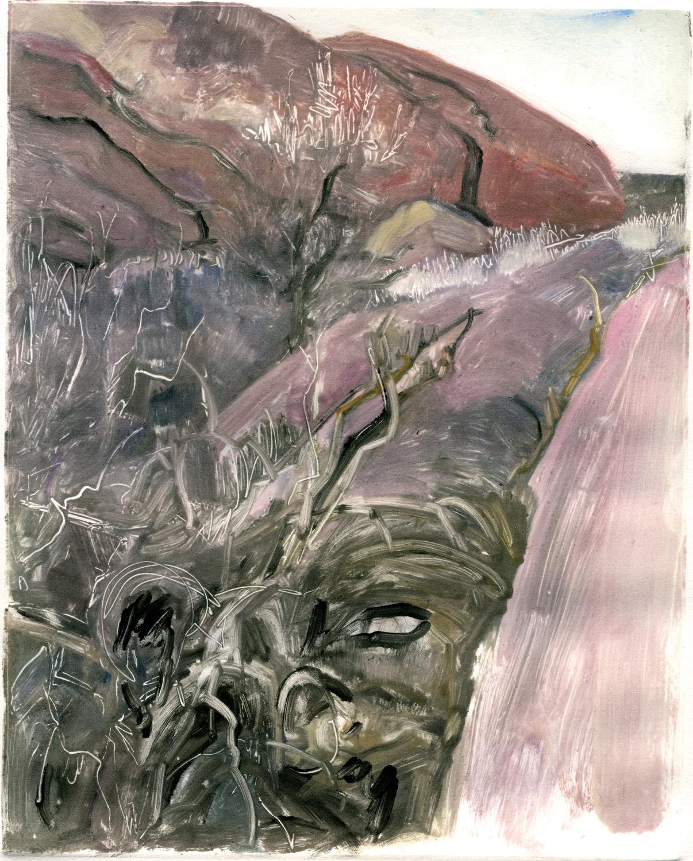 "Grassy Crevice (Red Rocks, Colorado) , 10"" x 8"", Monotype."