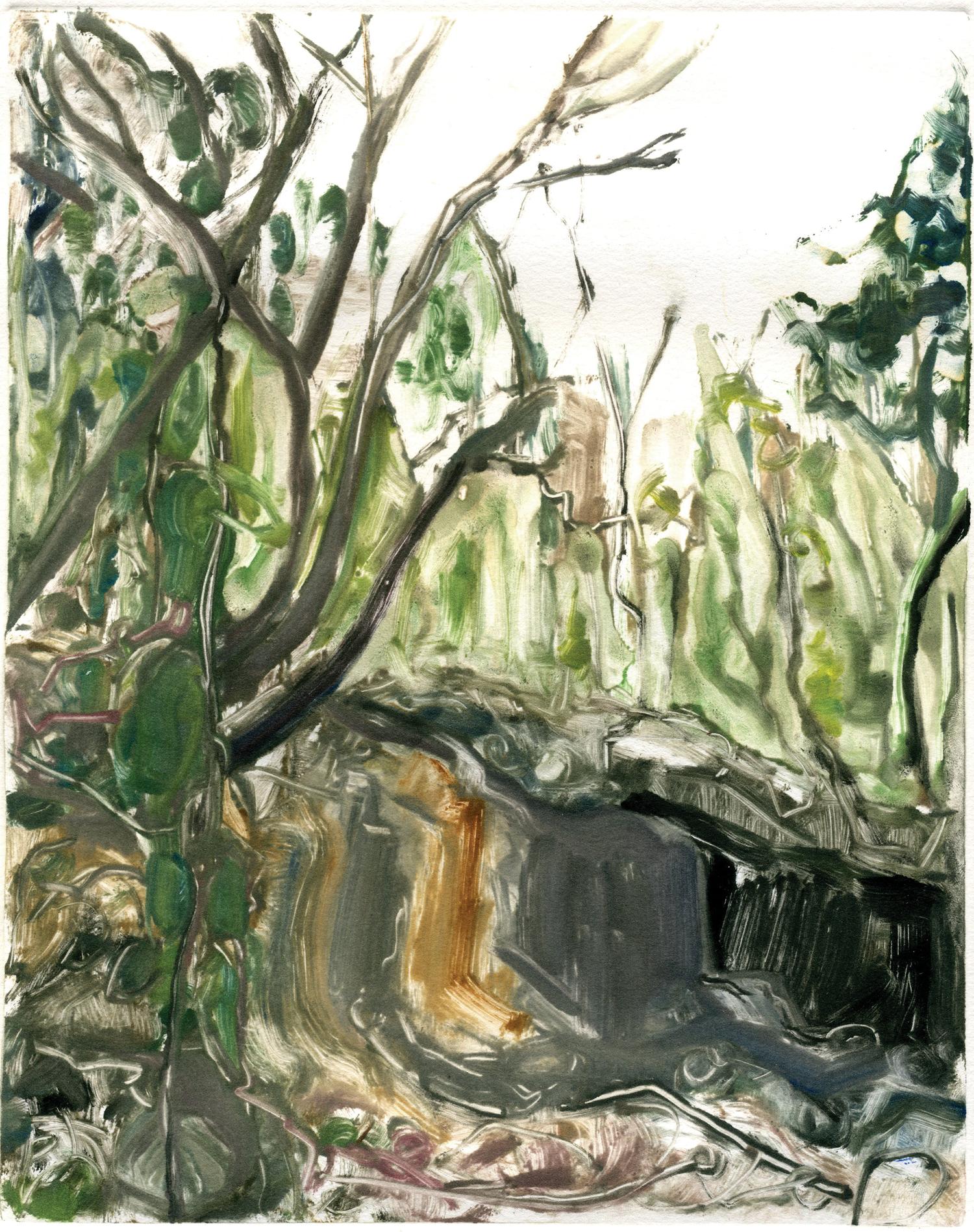 """Walk in an unknown wood (Altos de Chavón Residency),  10"""" x 8"""",  Monotype."""