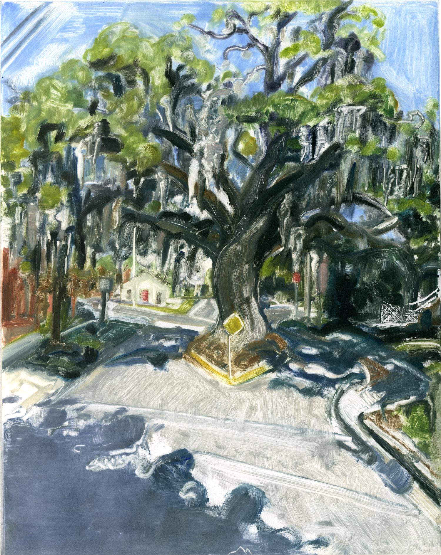 "Kate's Tree (Fernandina Beach),  14"" x 11"" , Monotype."