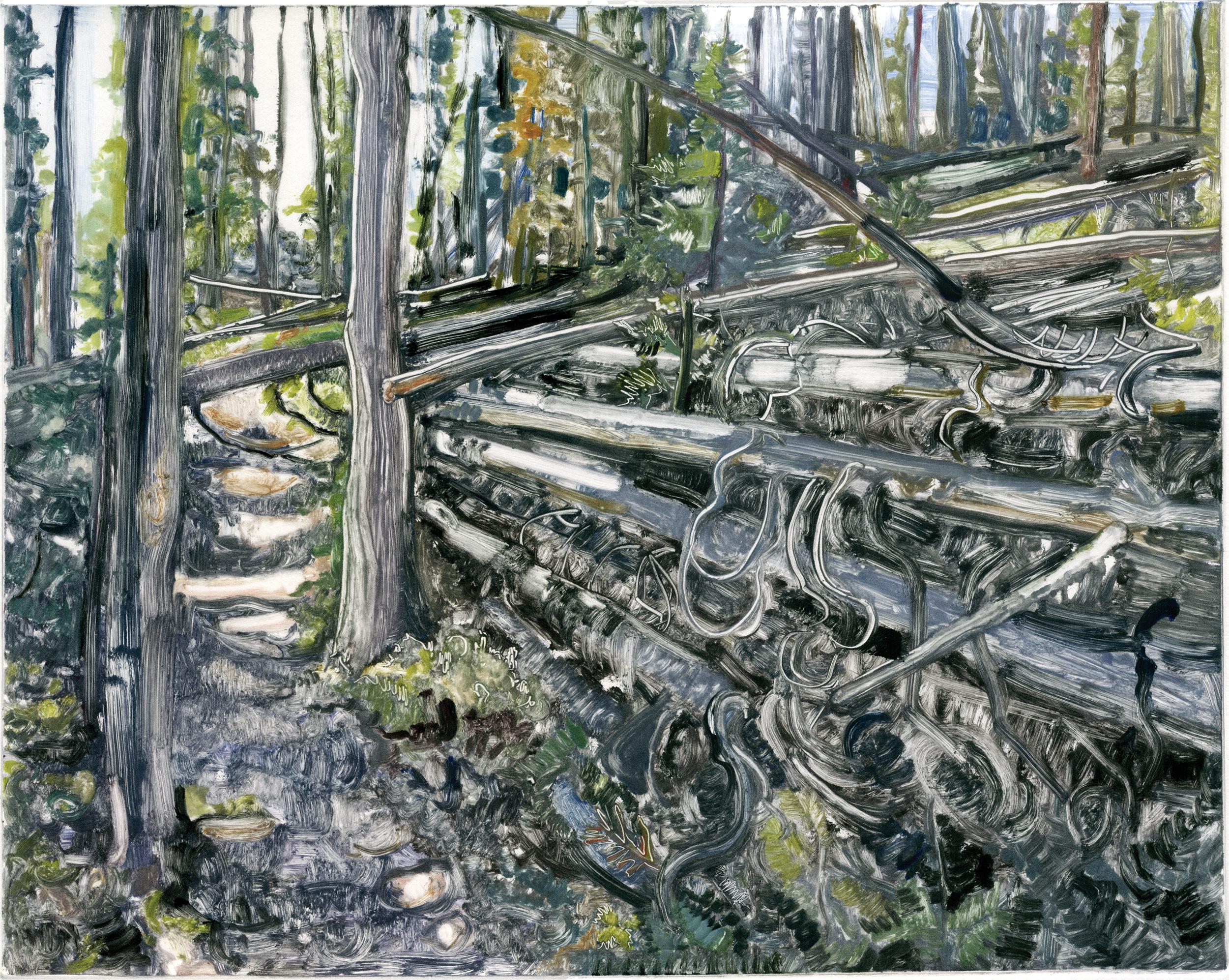 pathinthefallenwoodsweb.jpg
