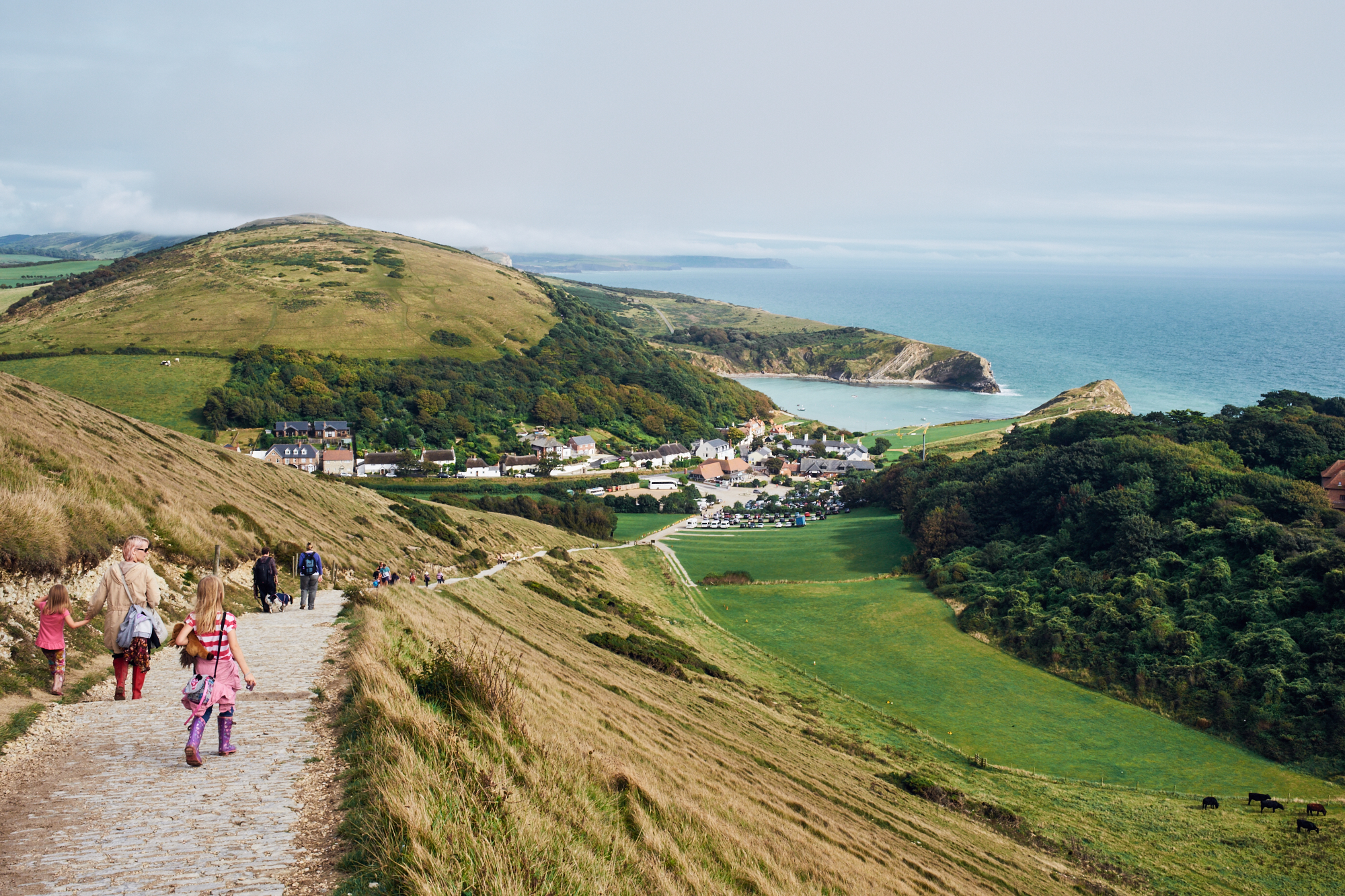 Lulworth Cove in distance © Andrew Newson
