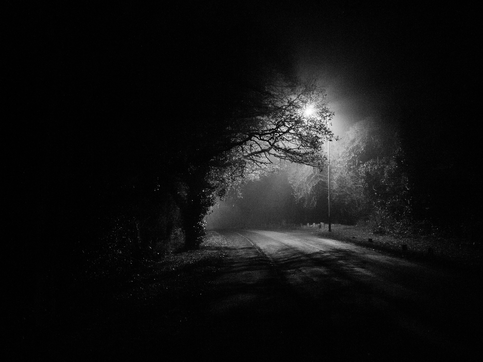 AngeloGifford_03_night-2_2000px.jpg